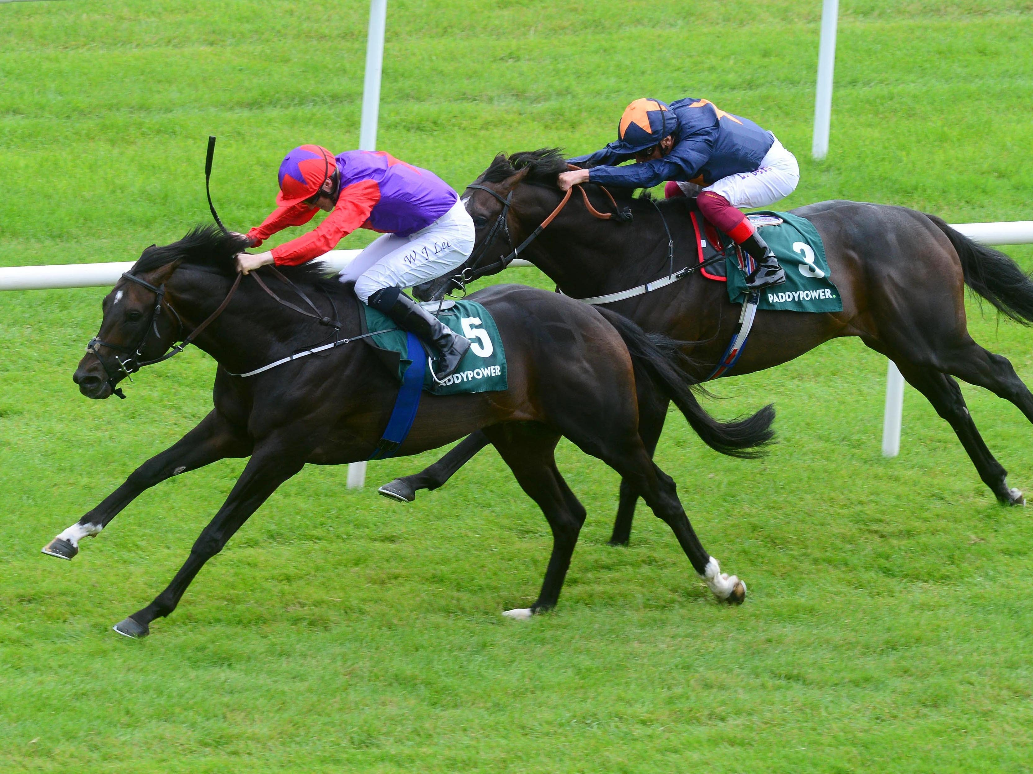 Romanised winning the Minstrel Stakes at the Curragh (PA)