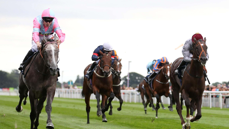 Irish 2000 guineas 2021 betting tips eo11 craps betting