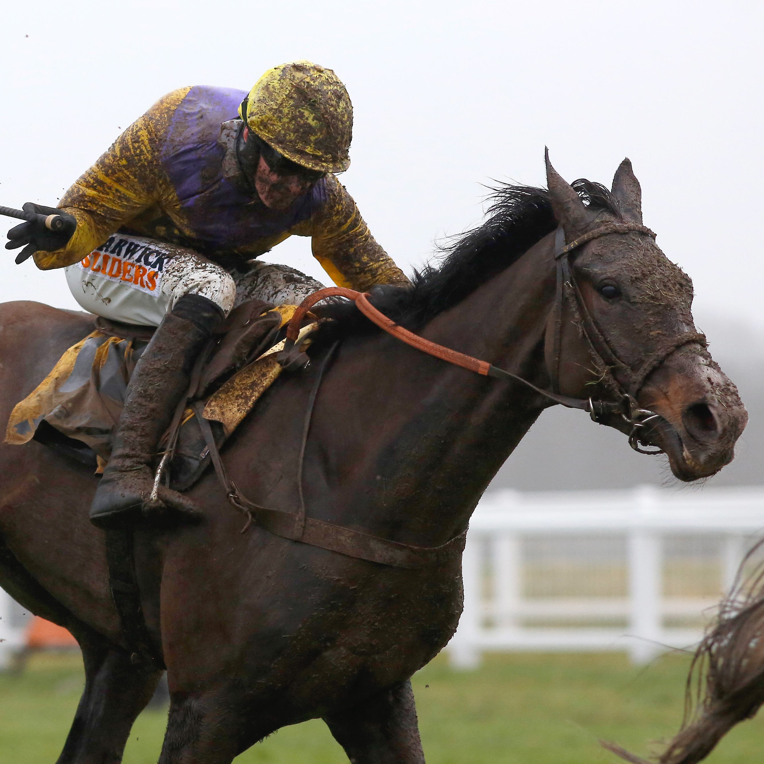 Kalashnikov on his way to winning the Betfair Hurdle at Newbury