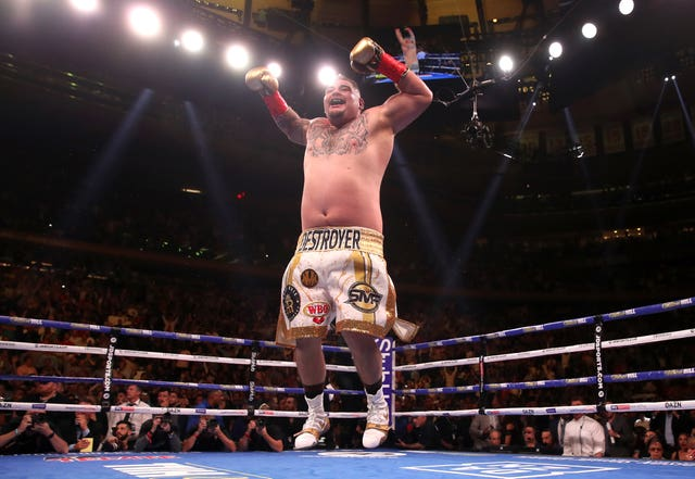 Andy Ruiz Jr celebrates his win