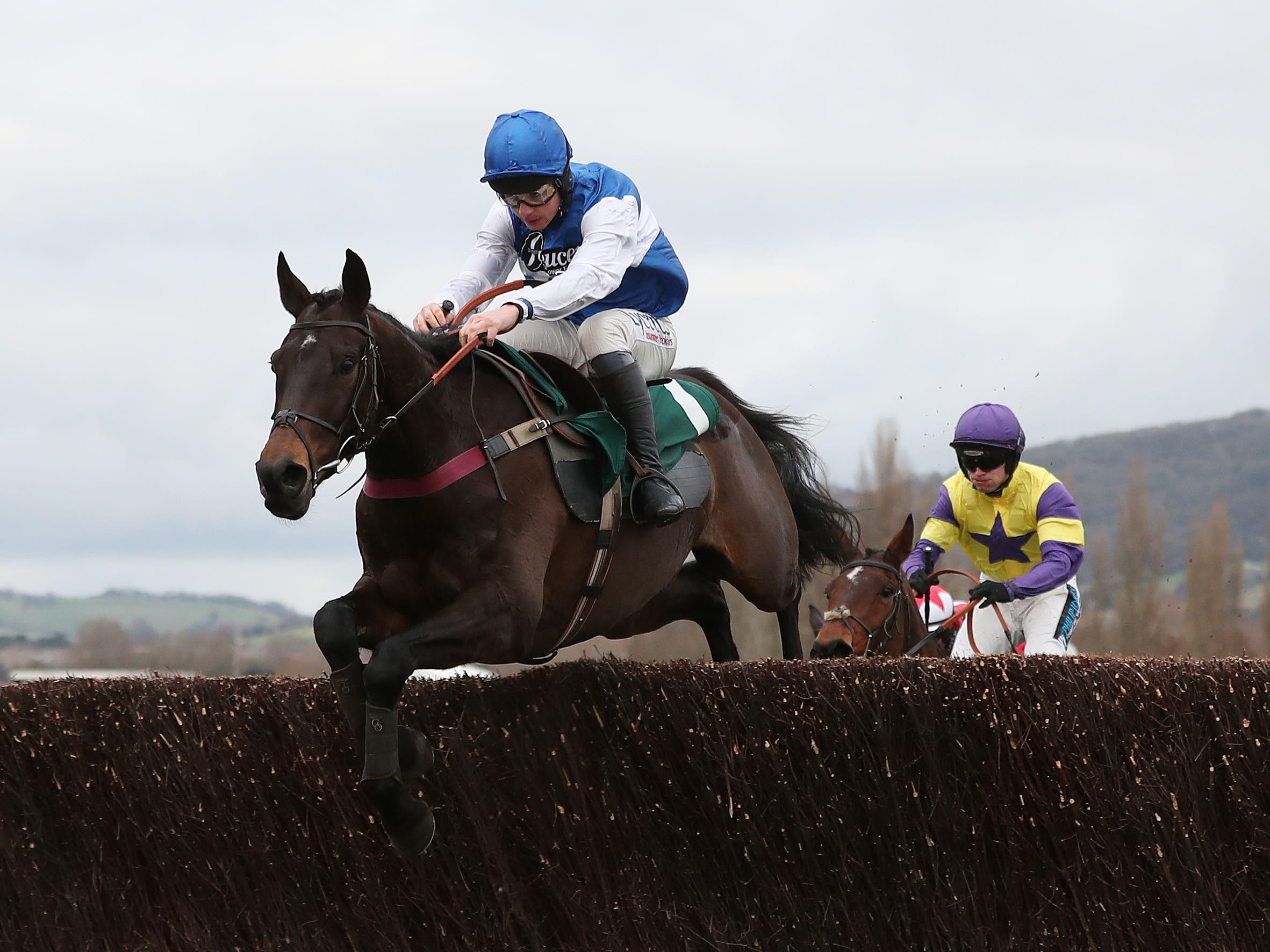 Aso on his way to winning at Cheltenham (David Davies/PA)