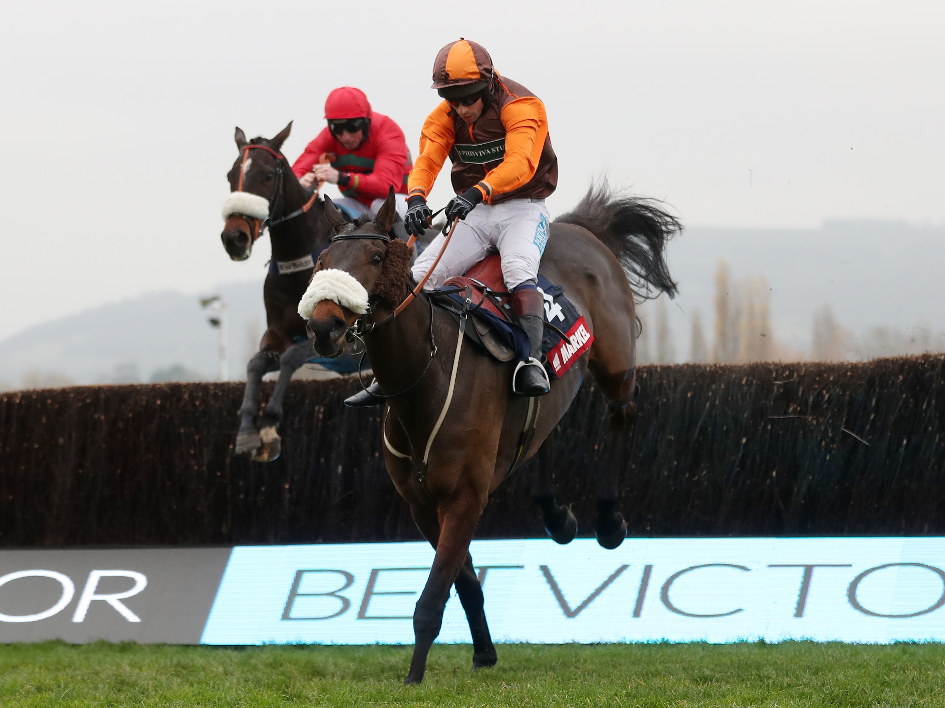 The Young Master who could head to the Fulke Walwyn Kim Muir Challenge Cup at the Cheltenham FestIval (David Davies/PA)