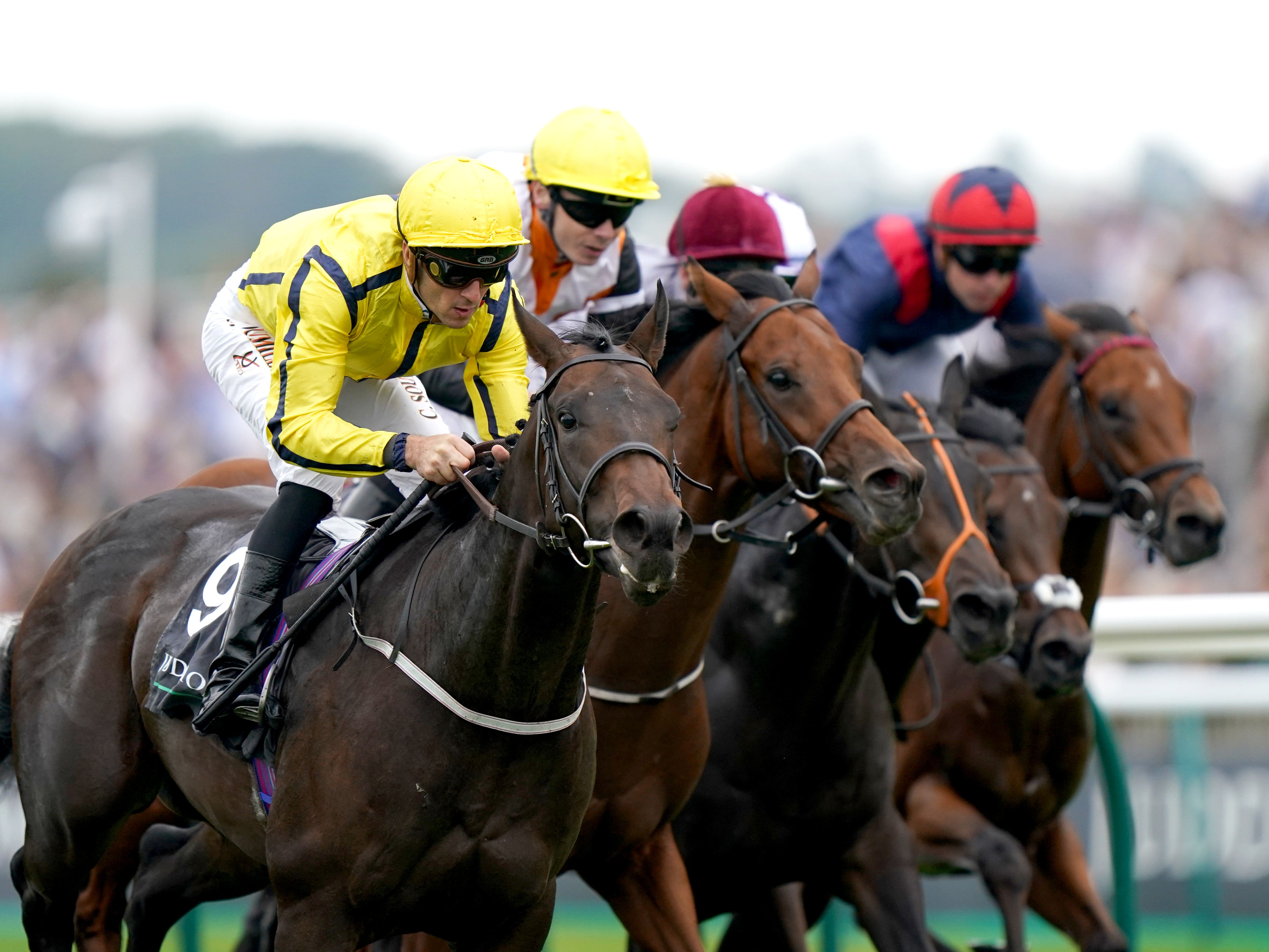 Perfect Power (left) got the best of a bunch finish to the Middle Park Stakes (Tim Goode/PA)