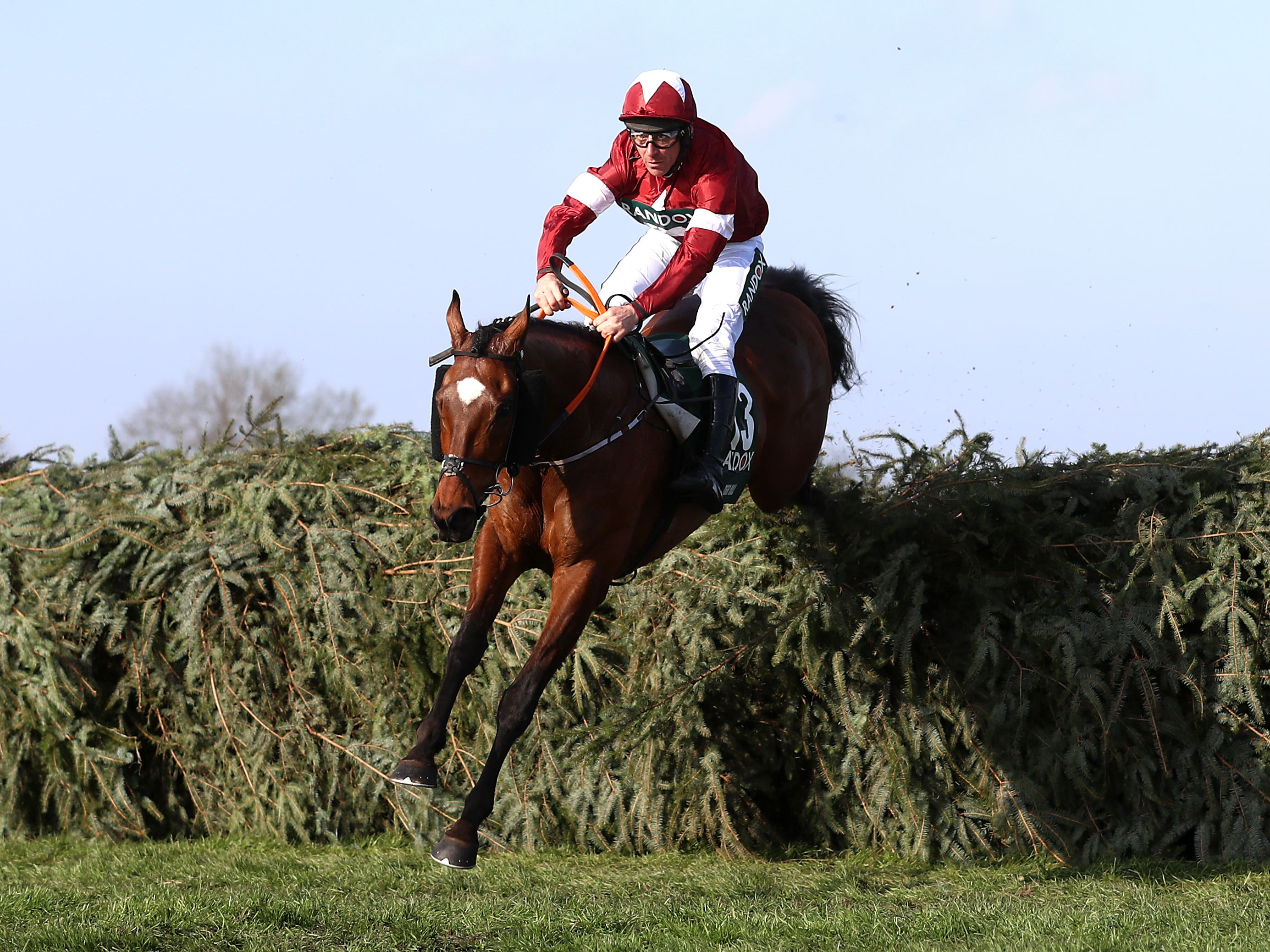Tiger Roll was on course to join Red Rum as a three-time winner of the National (Tim Goode/PA)