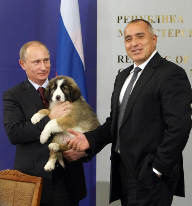 Russia Puppy-Presidential Presents