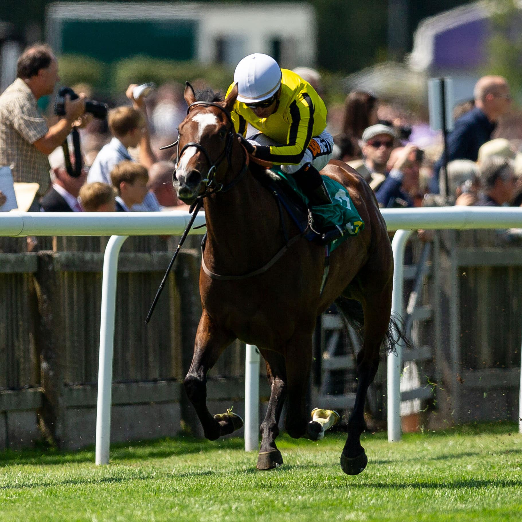 Pretty Pollyanna stormed to victory at Newmarket