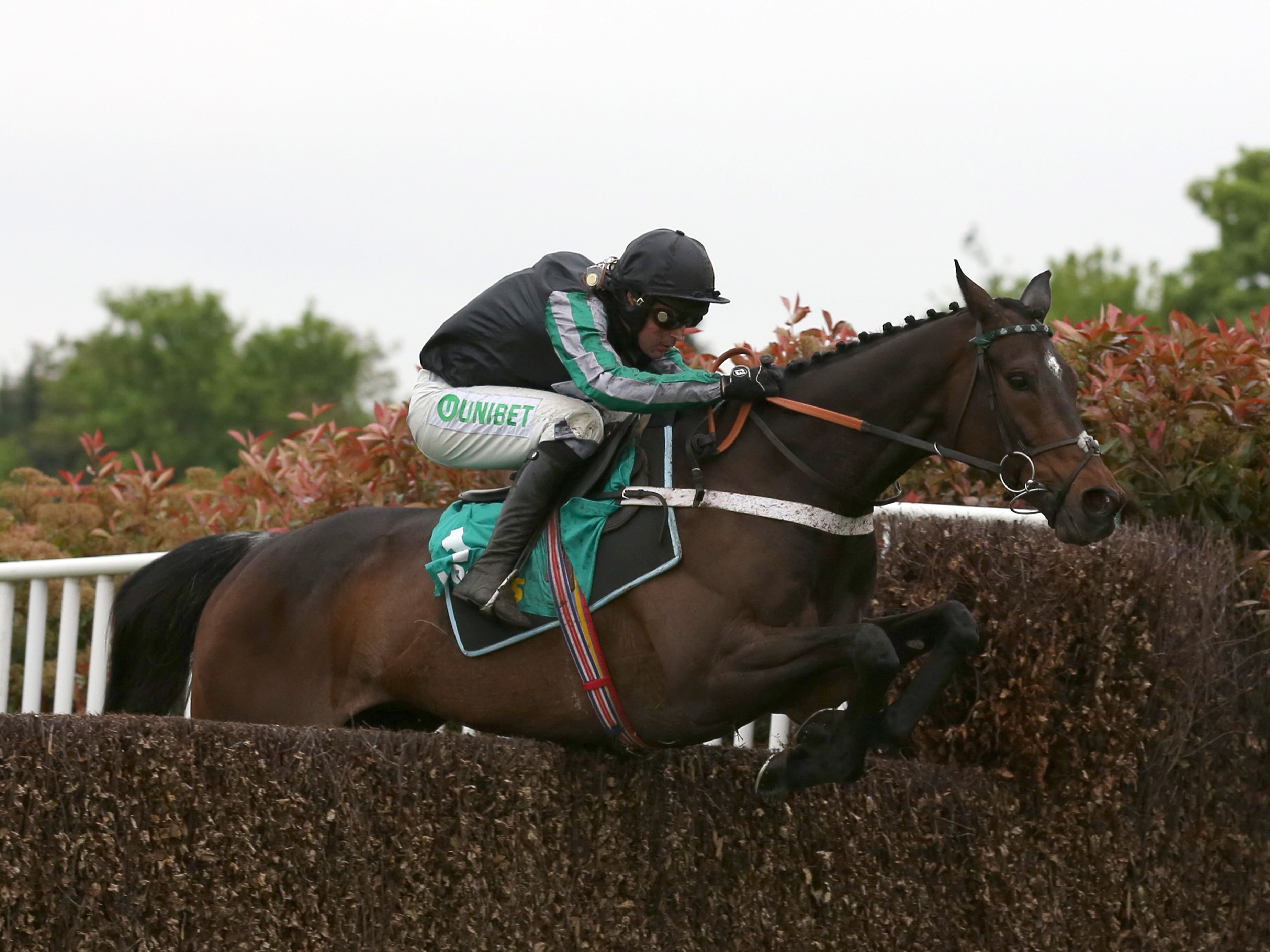 Altior winning at Sandown in April (Julian Herbert/PA)