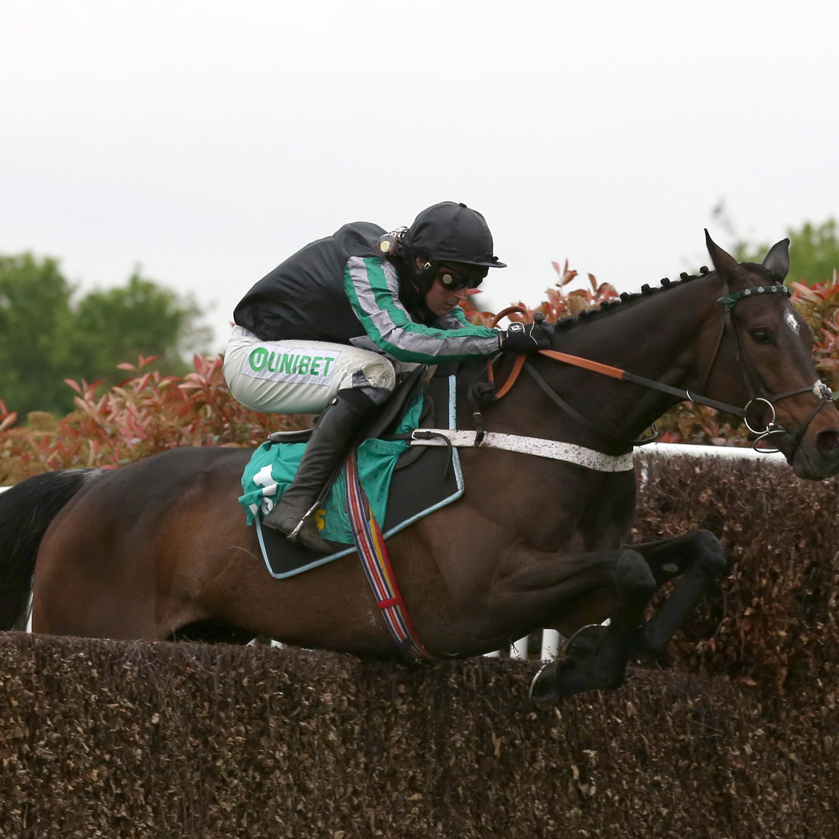 Altior winning at Sandown in April