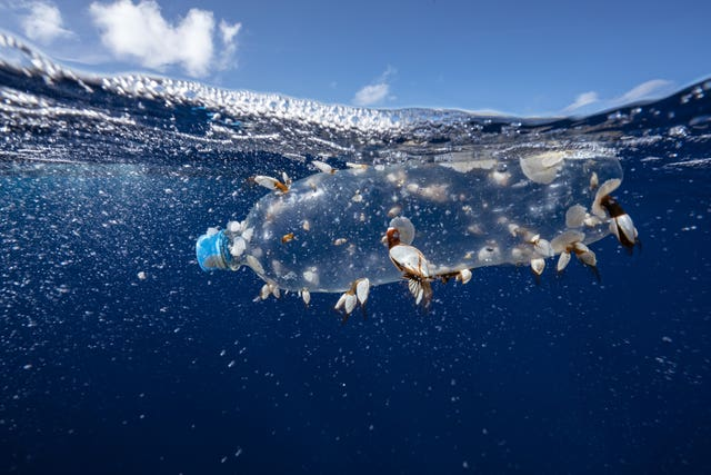 Call to protect oceans