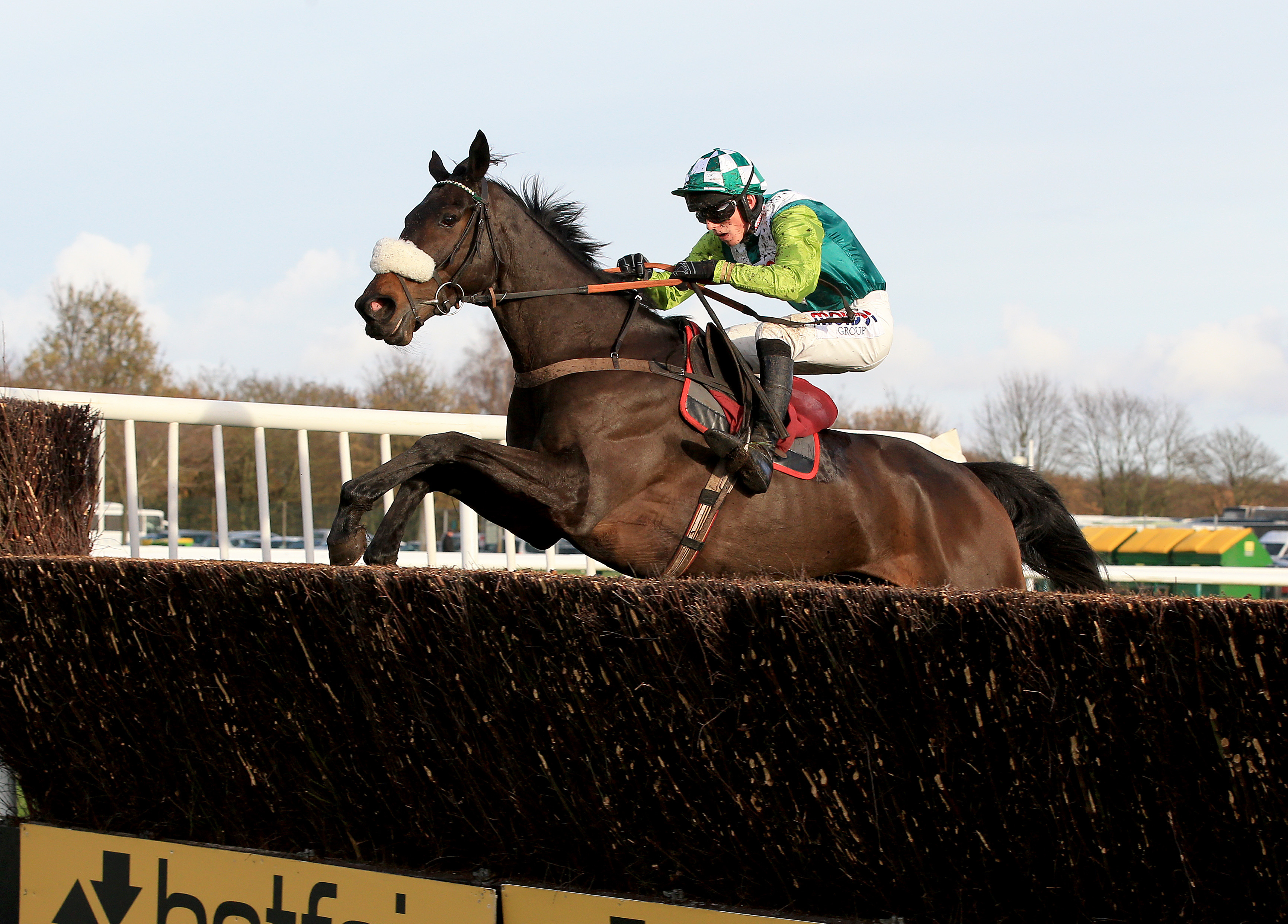 Clan Des Obeaux and Harry Cobden in action at Haydock