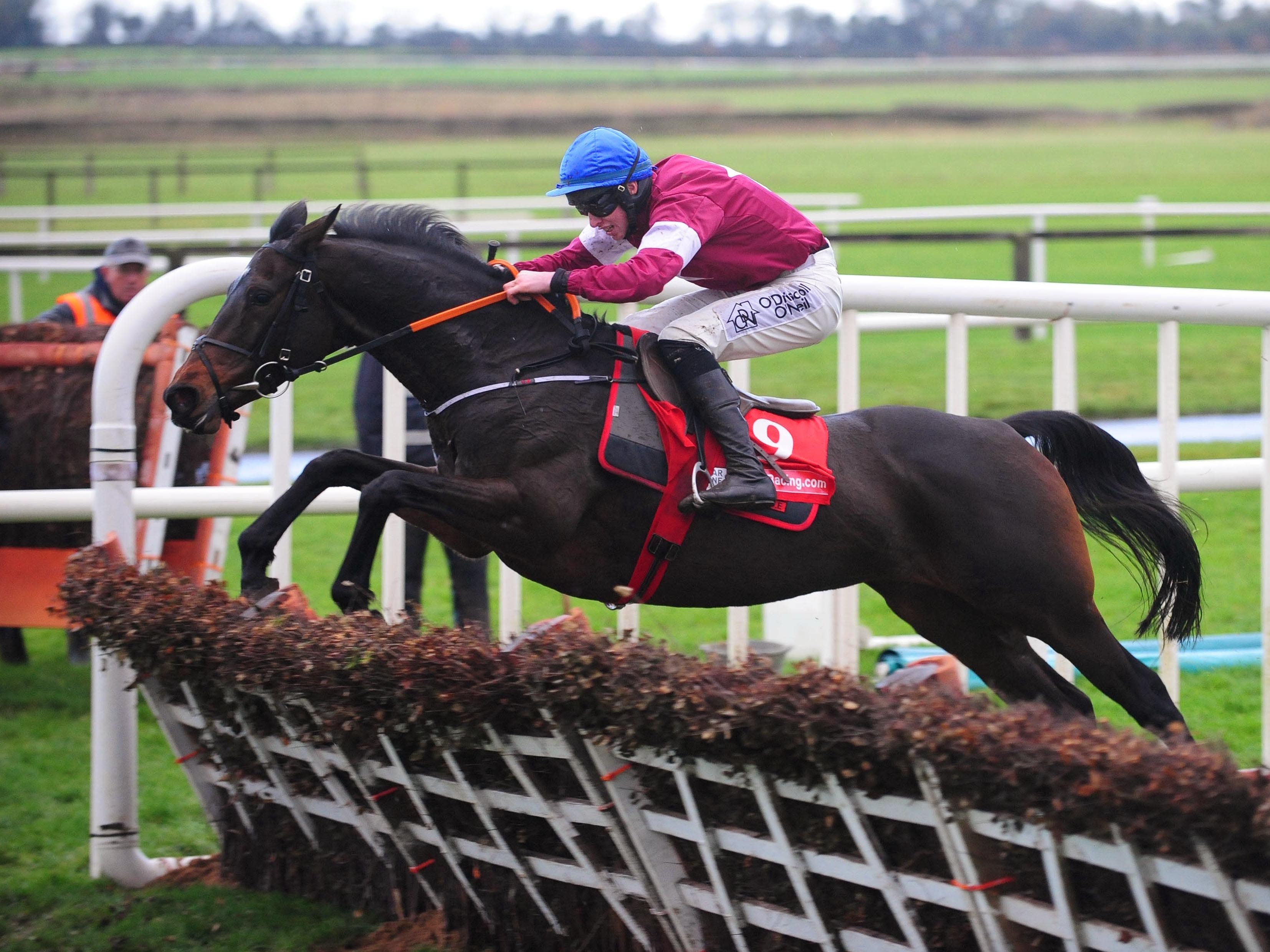 Apple's Jade winning her third Hatton's Grace (PA Wire)
