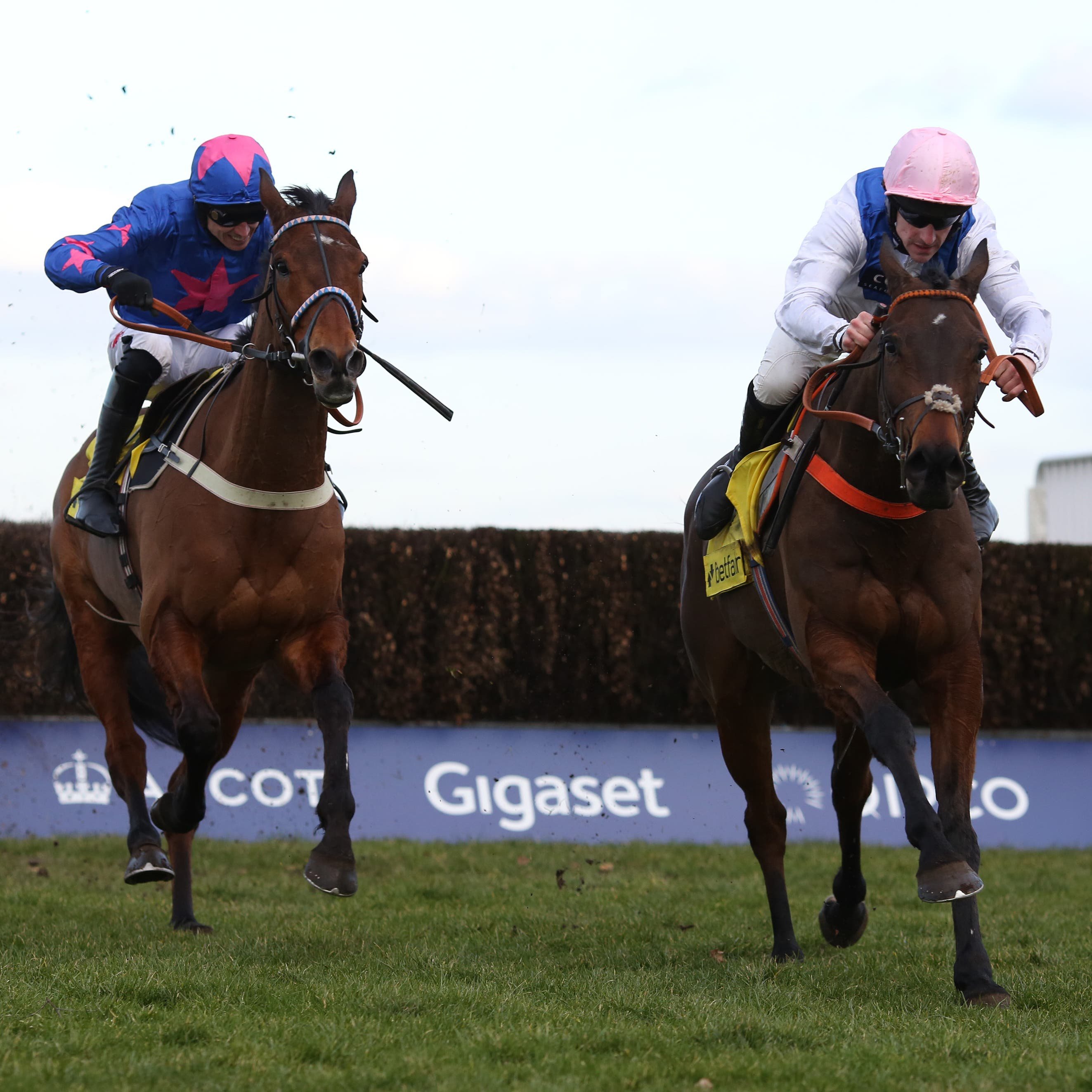 Waiting Patiently (right) sees off Cue Card in the Ascot Chase