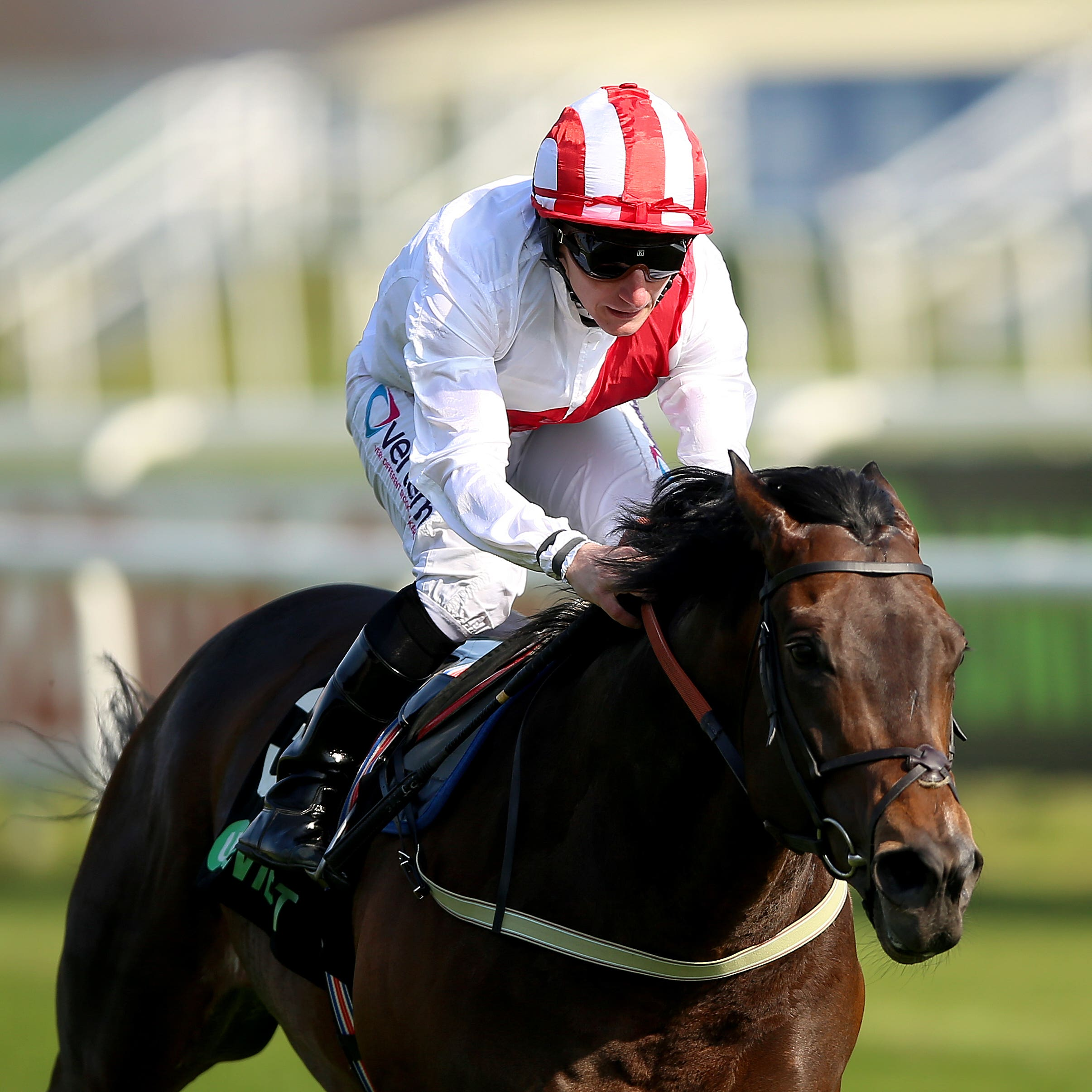 Invincible Army is set to reappear at Newcastle on Saturday following his defeat at Royal Ascot