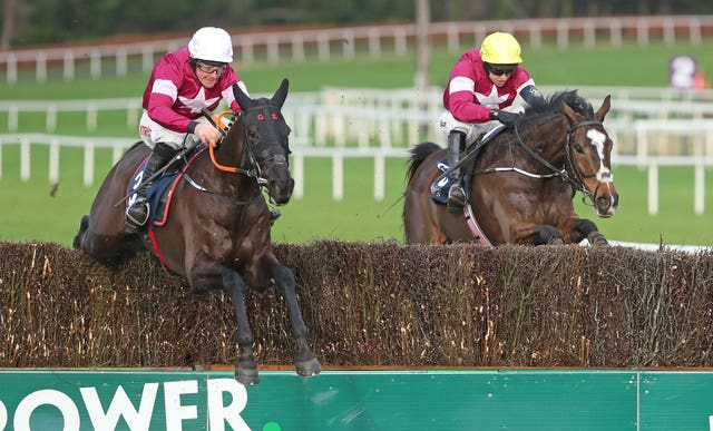 Delta Work (left) is another likely to be in action at Punchestown