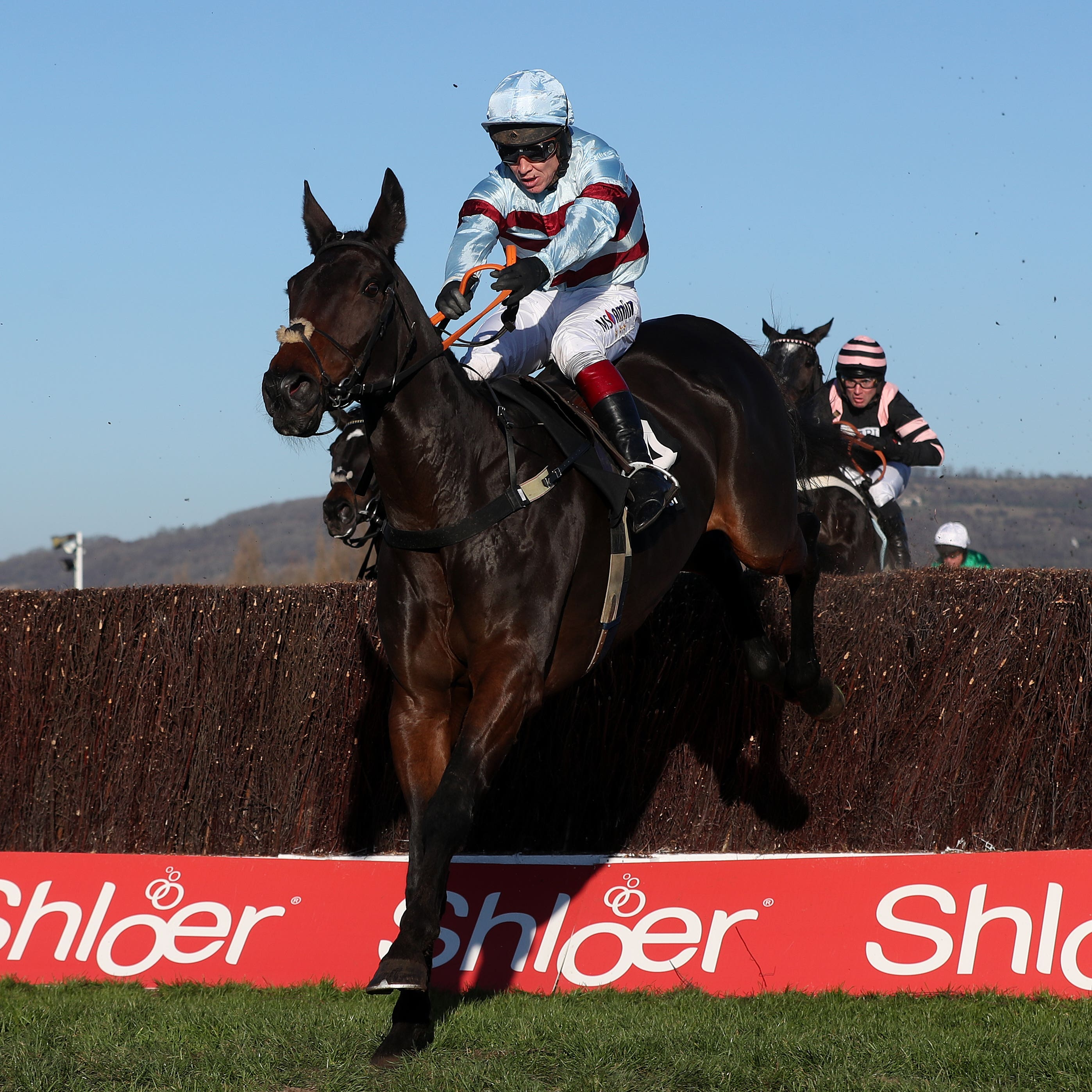 Lalor wins at Cheltenham in November