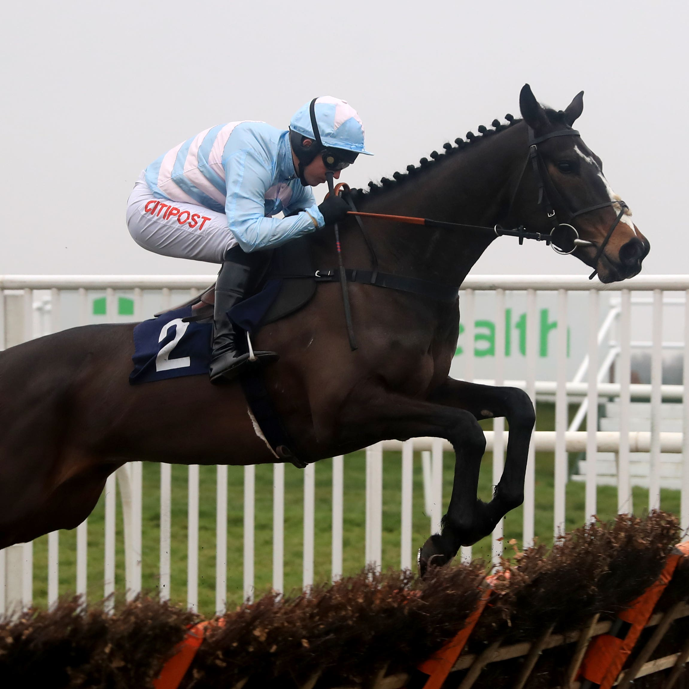 Black Op is an exciting recruit to chasing