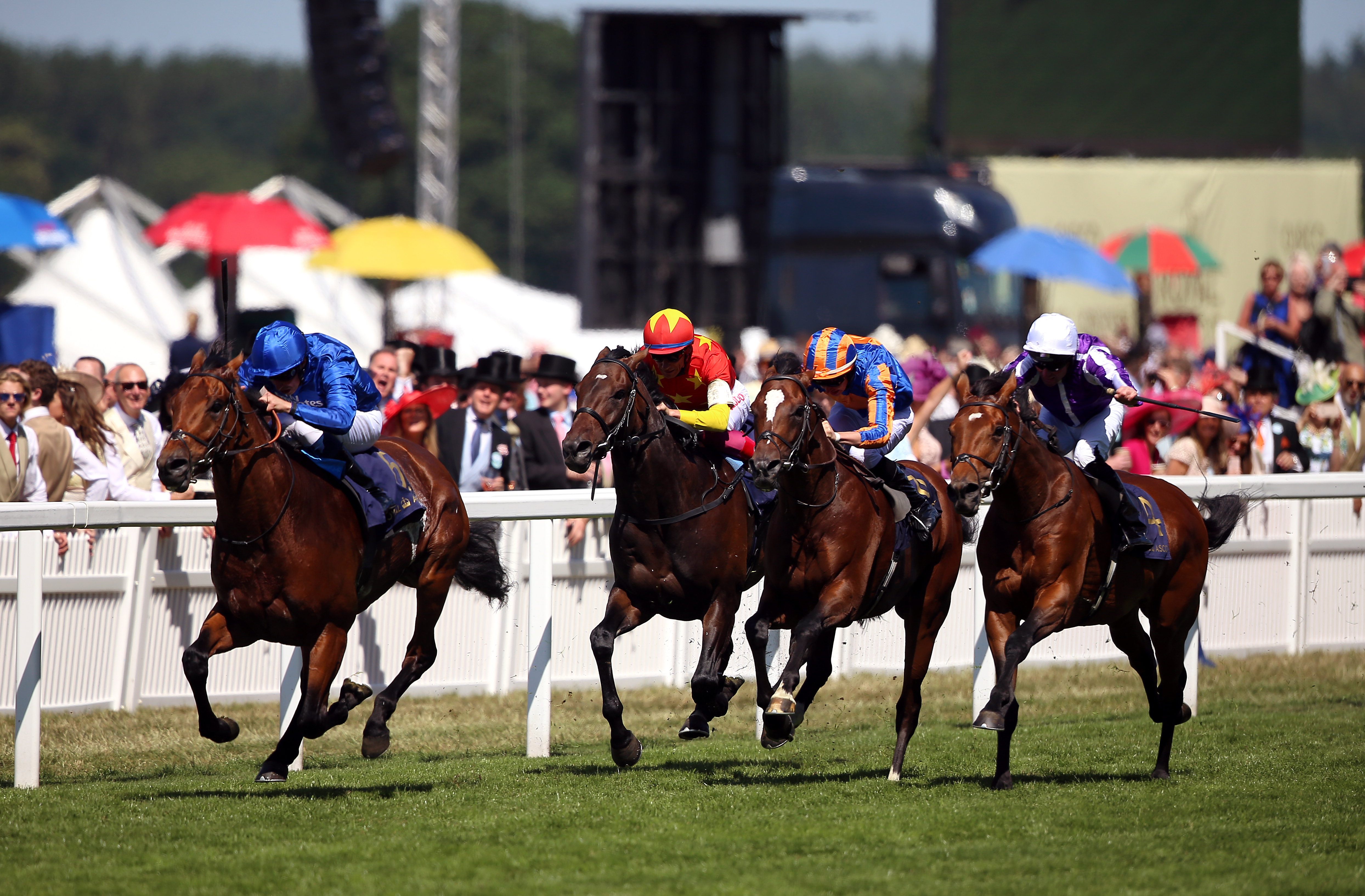 Royal Ascot winner Old Persian could yet go for the St Leger