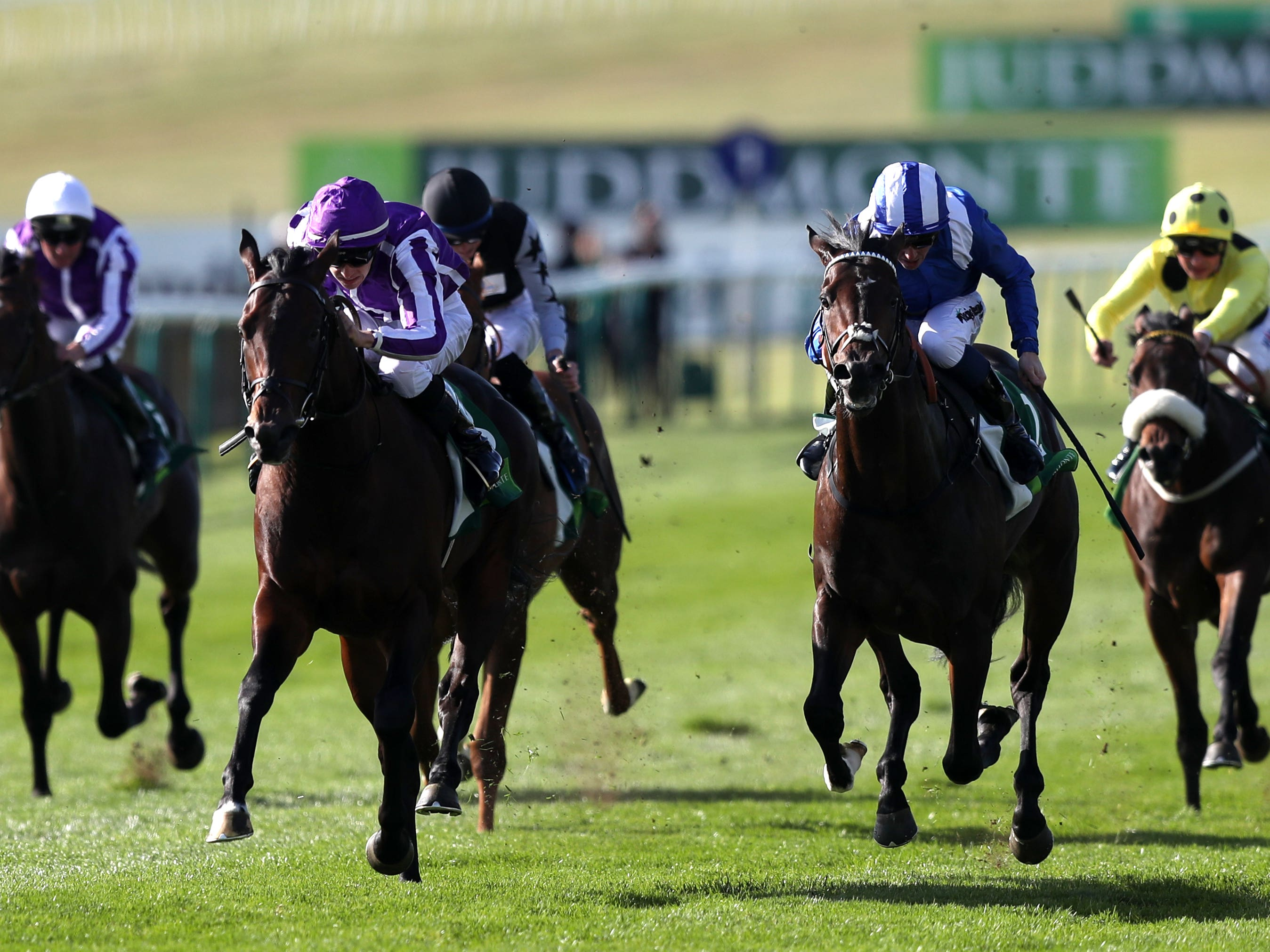 Jash (striped cap) pushed Ten Sovereigns close last year (Simon Cooper/PA)