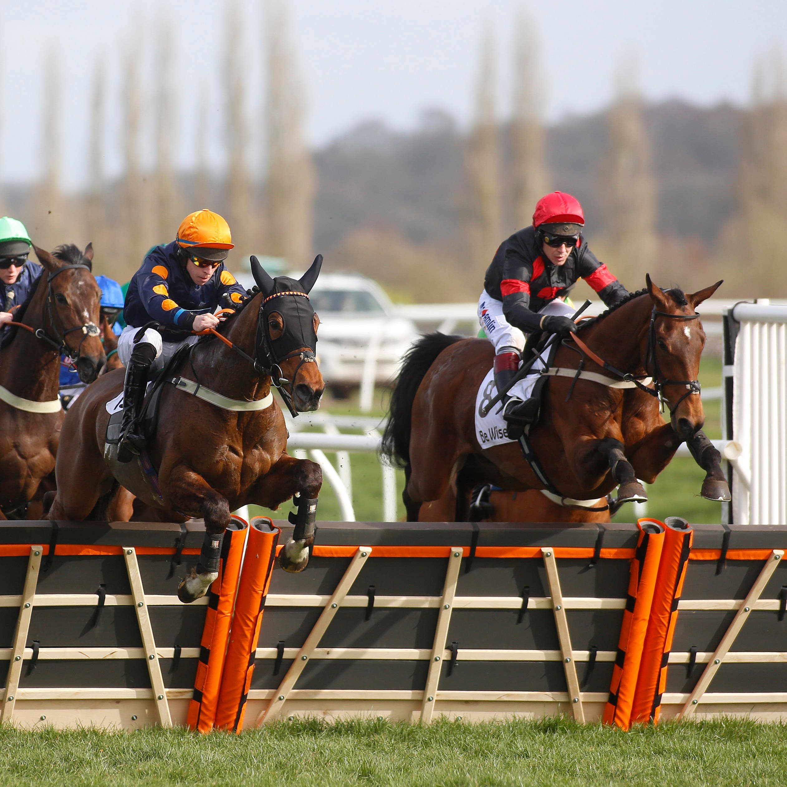 The Knot Is Tied (right) and Richard Johnson clear an early flight on the way to victory at Newbury
