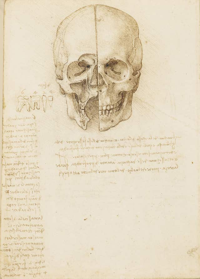 A Leonardo da Vinci drawing (Royal Collection Trust)