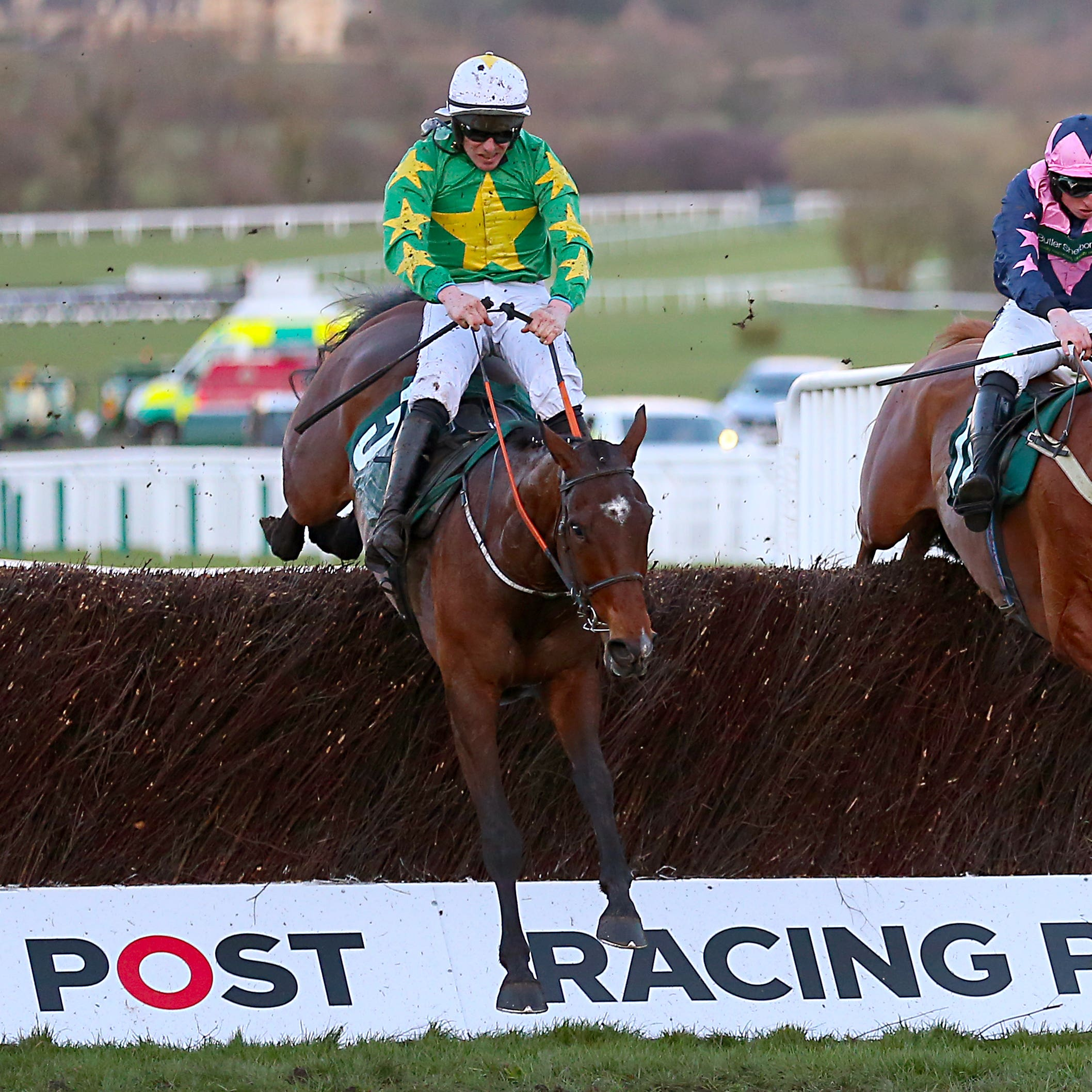 Discorama (left) was a brave runner-up in Cheltenham's National Hunt Chase last week