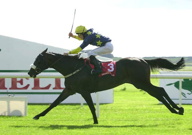 Vinnie Roe and Pat Smullen racing to victory in the Irish St Leger