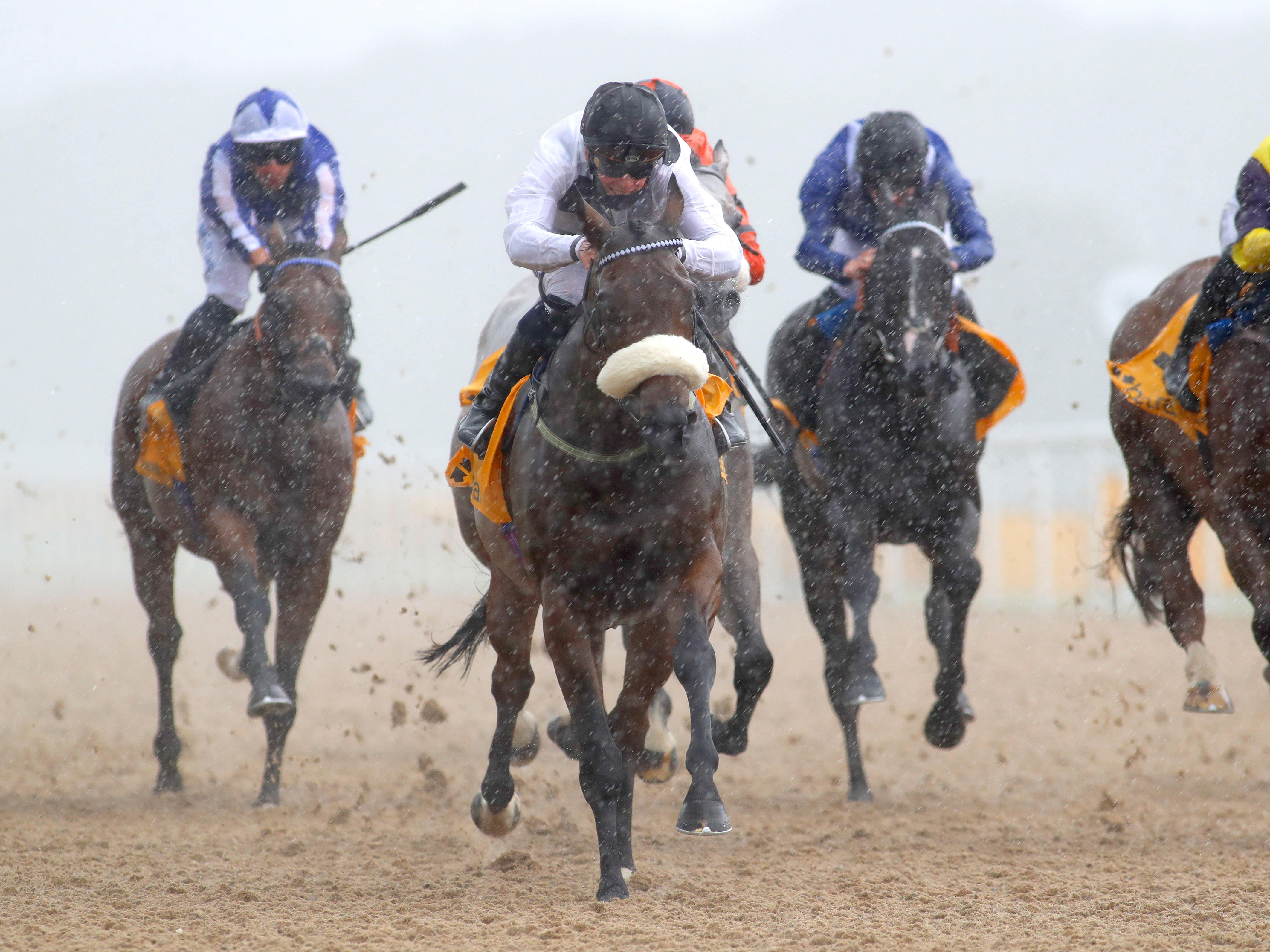 Judicial is set to switch back to the turf for either the July Cup or Hackwood Stakes after his victory at Newcastle (PA)