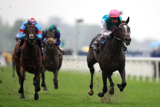 Enable (not pictured) was beaten by her stablemate Shutter Speed (pictured, right) in the Dubai Duty Free Golf World Cup EBF Stallions Conditions Stakes at Newbury in 2017