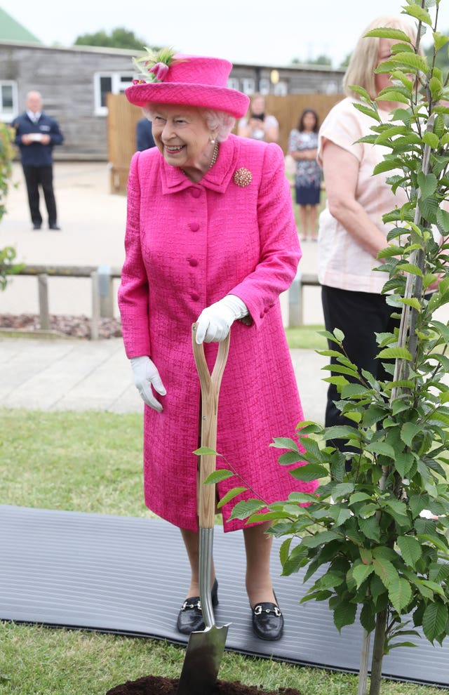 The public are being urged to celebrate trees at home and within their community as a special gift to the Queen (Chris Jackson/PA)