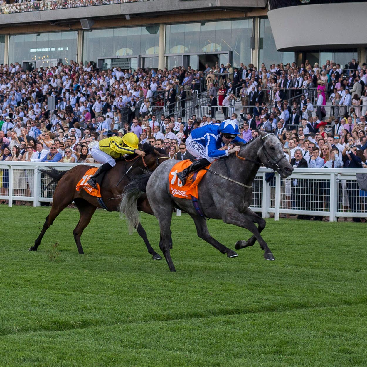 Librisa Breeze winning at Ascot