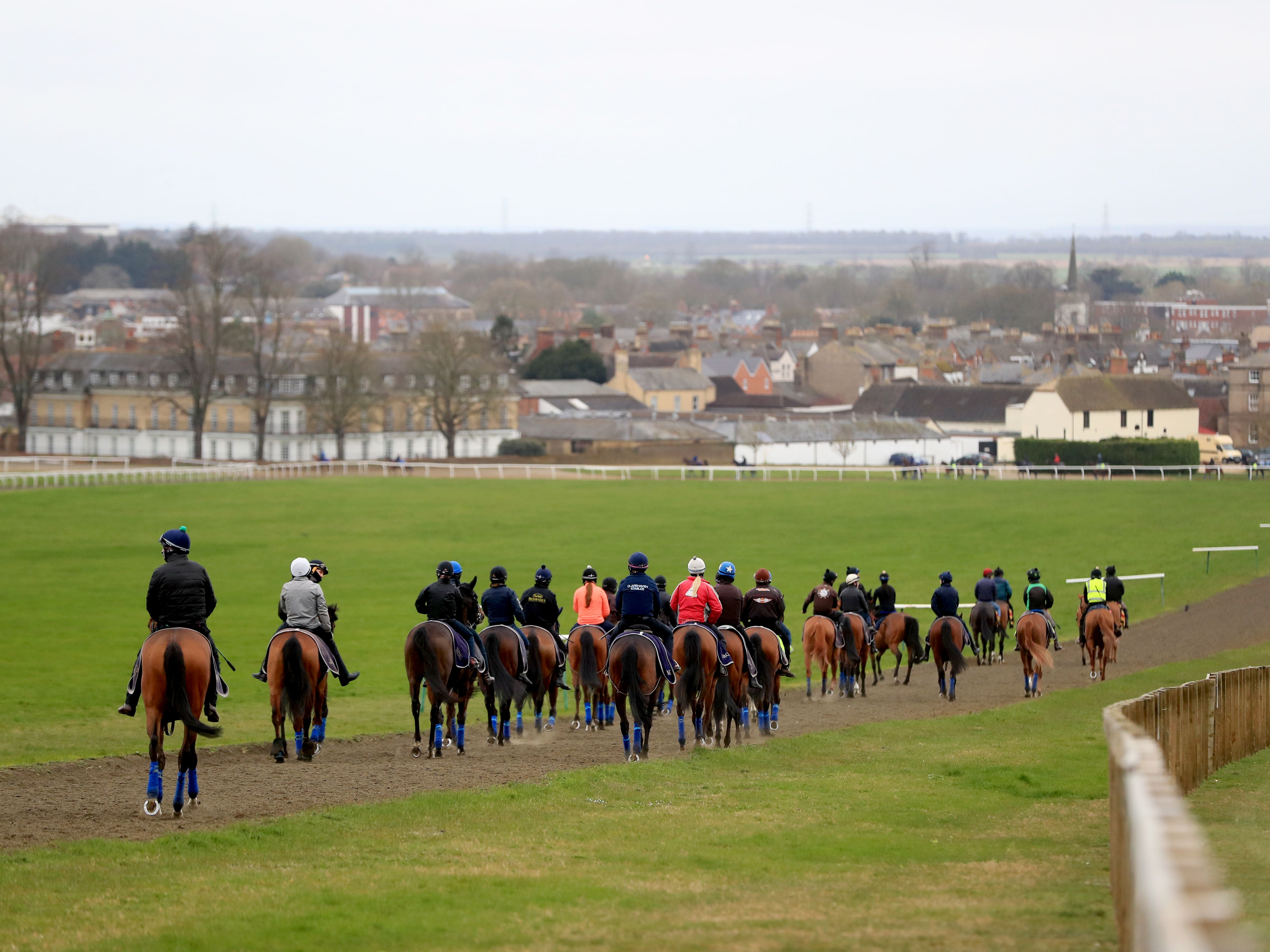 Horses on the gallops in Newmarket (Mike Egerton/PA)