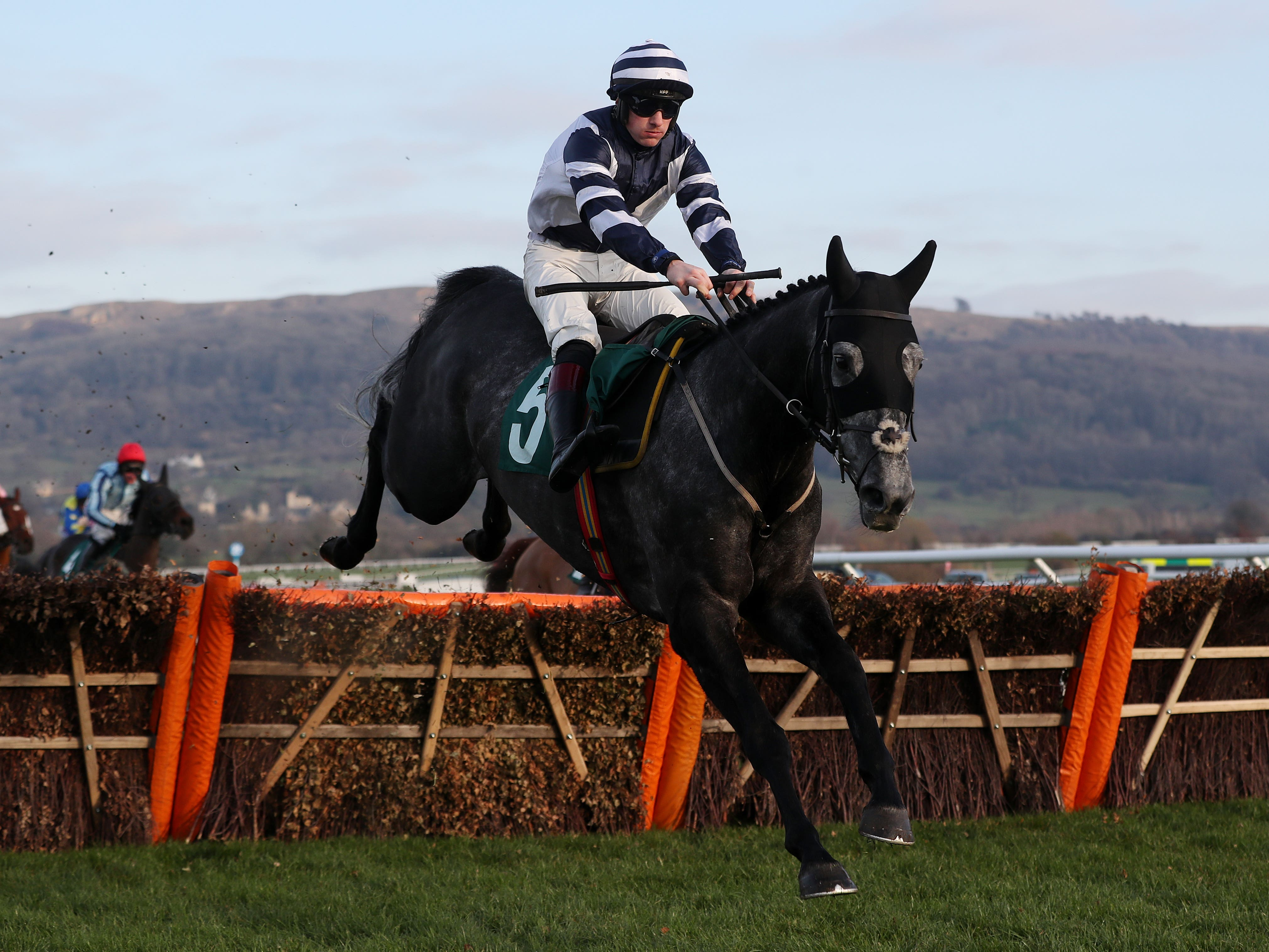 Al Dancer is likely to go novice-chasing next season (David Davies/PA)
