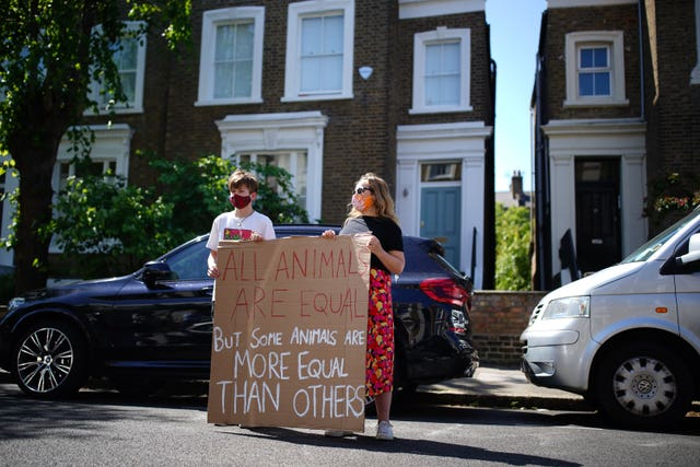 Protesters hold a sign with a quote from George Orwell's Animal Farm outside the north London home of Dominic Cummings