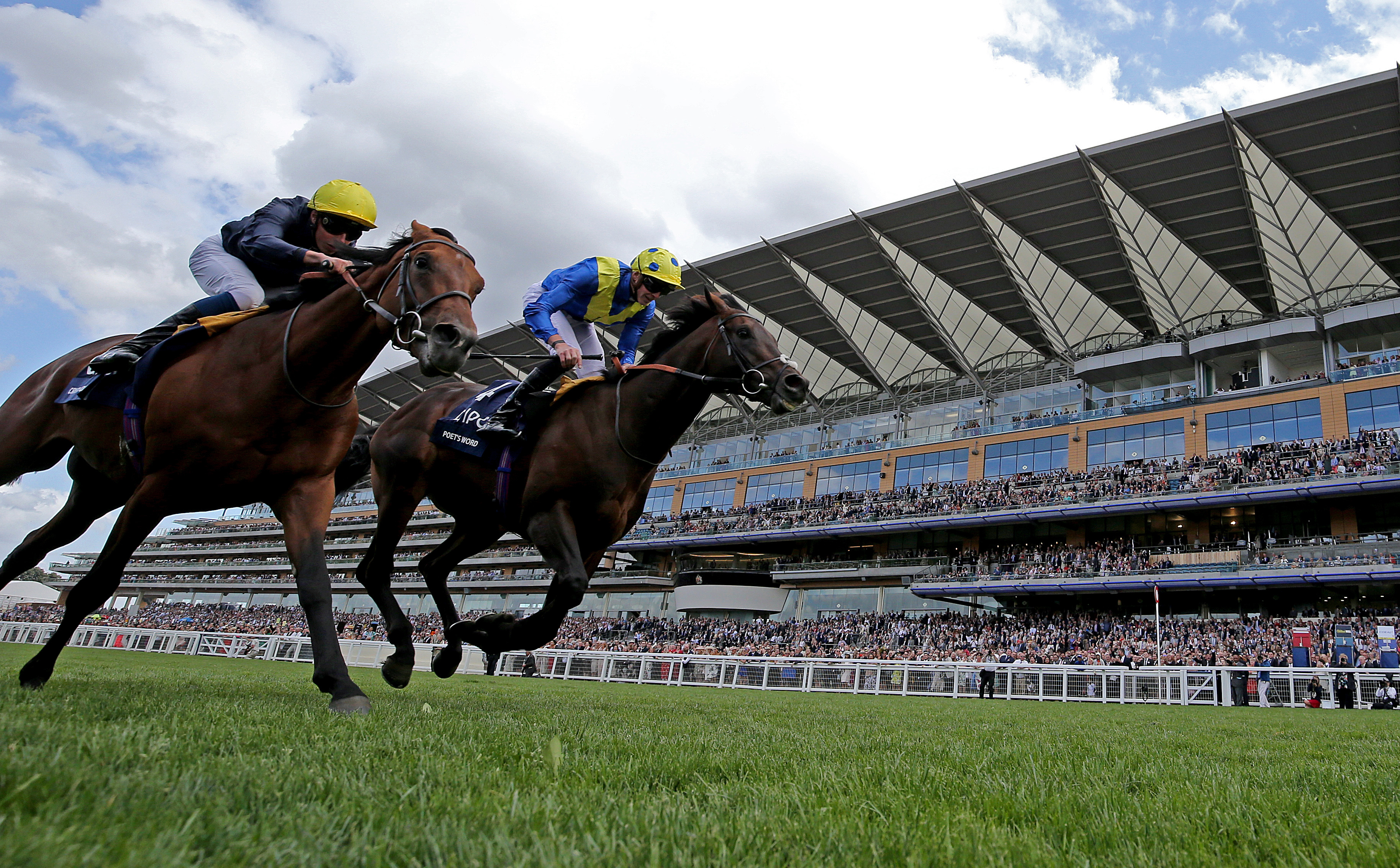 Poet's Word just got the better of Crystal Ocean in the King George