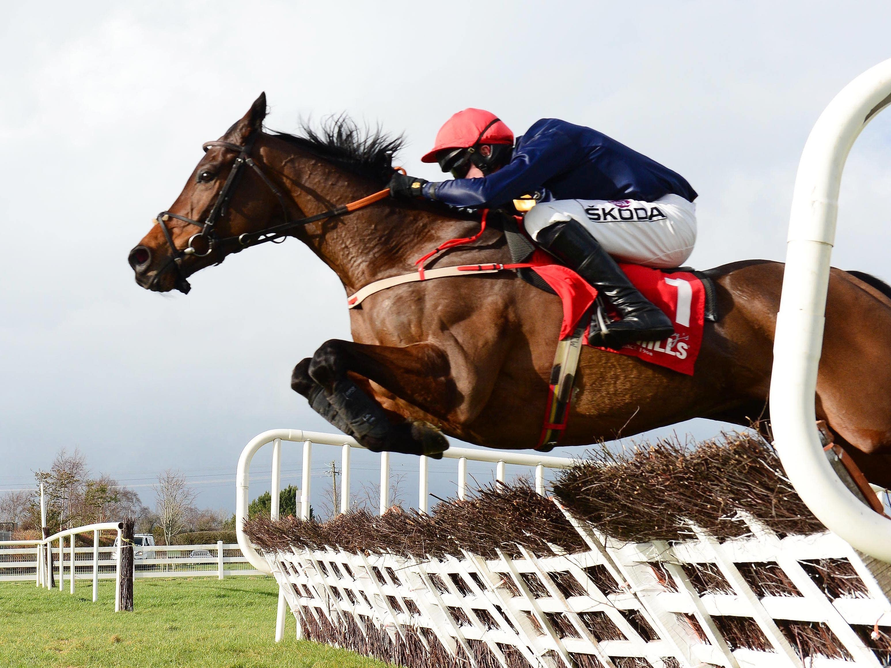 City Island and Mark Walsh jump the last to win in style at Naas (PA)