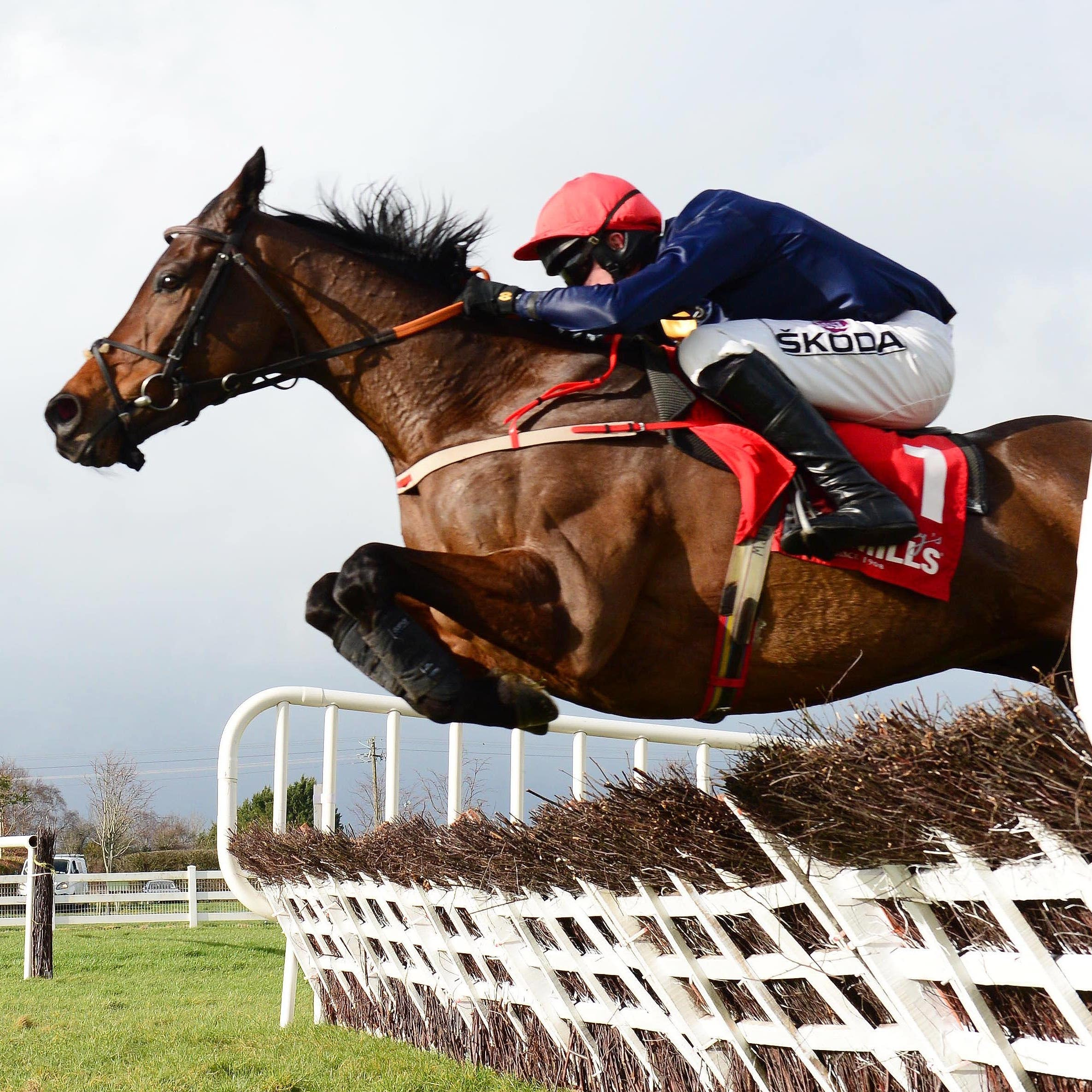 City Island and Mark Walsh jump the last to win in style at Naas