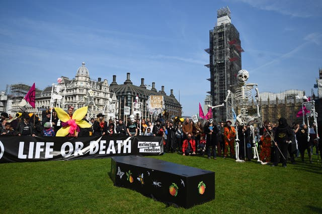 Demonstrators lay Ruby the rhinoceros in Parliament Square