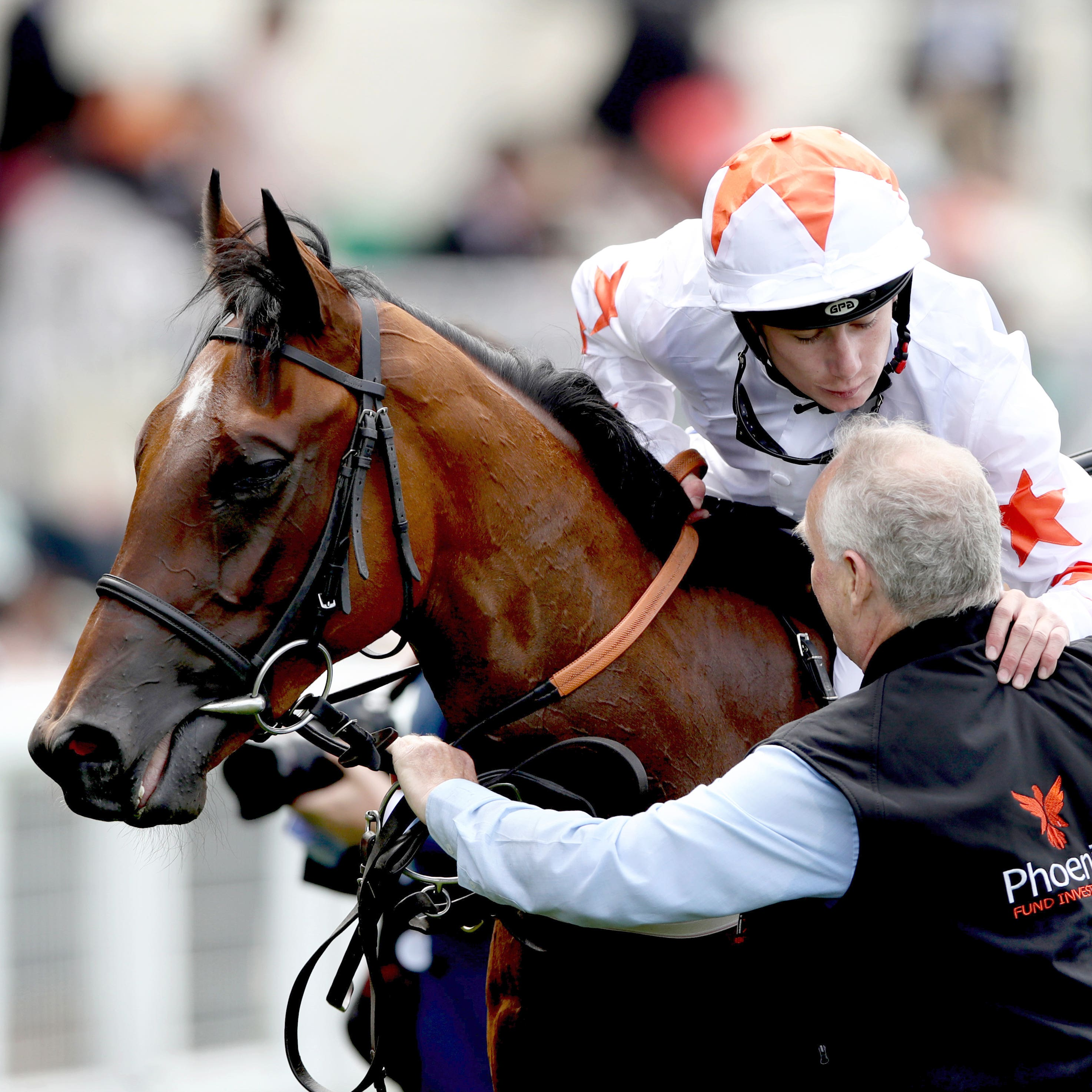 Signora Cabello after winning the Queen Mary at Royal Ascot