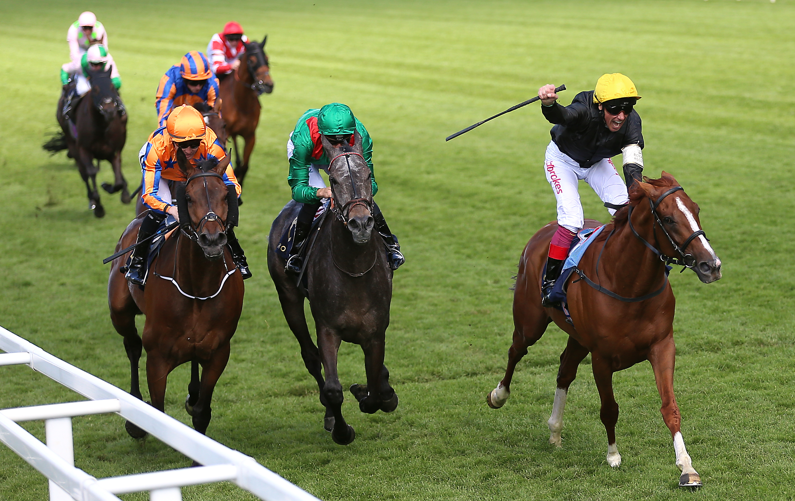 Torcedor (left) will clash with Stradivarius again in the Goodwood Cup