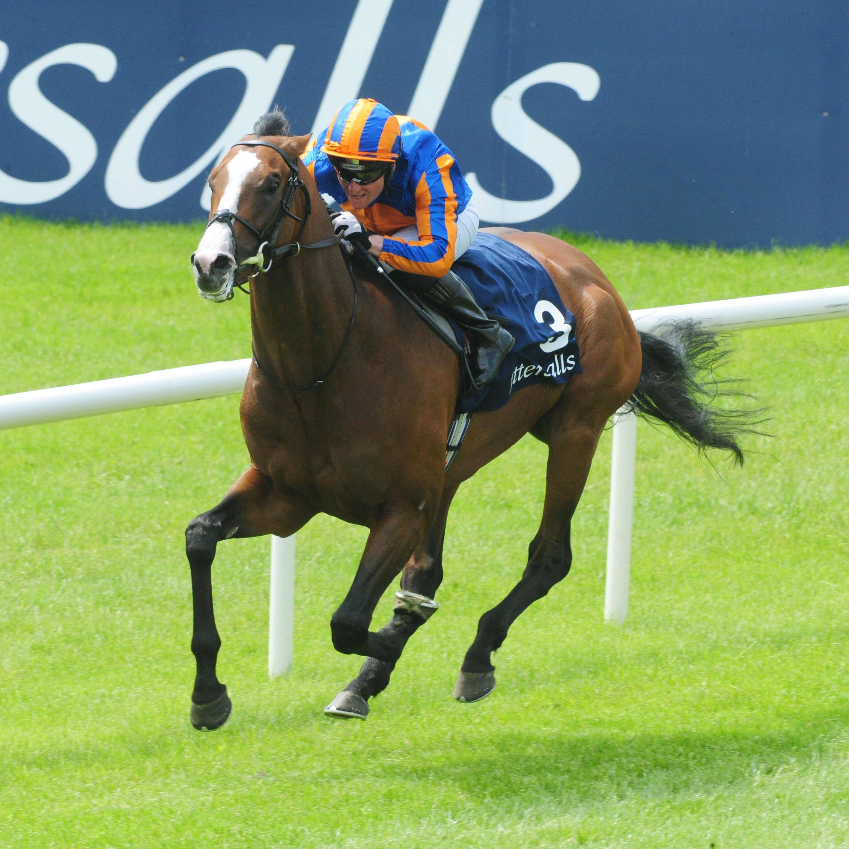 Lancaster Bomber on his way to winning the Tattersalls Gold Cup at the Curragh