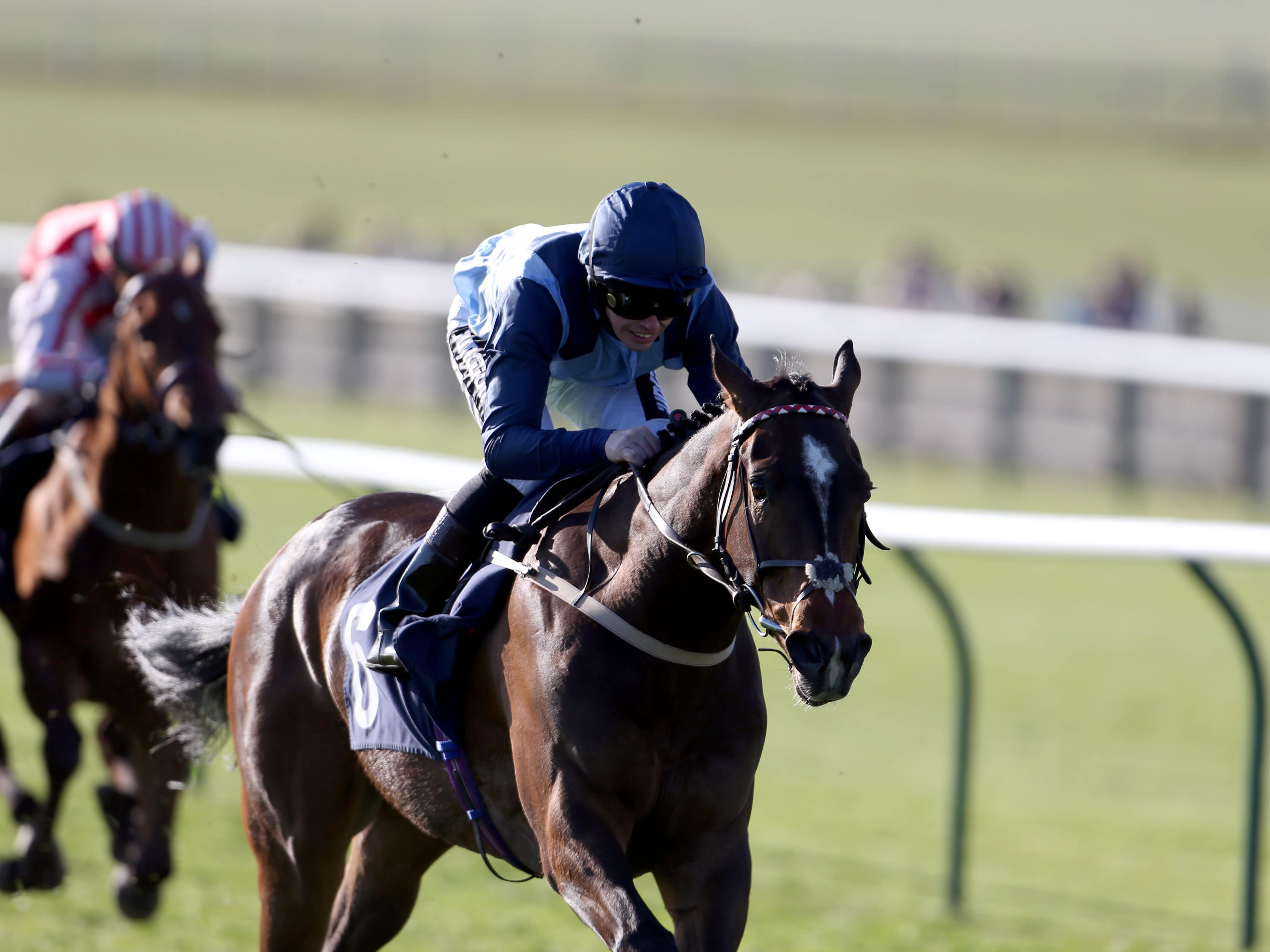 Danzeno is likely to miss Ayr (Steve Parsons/PA)