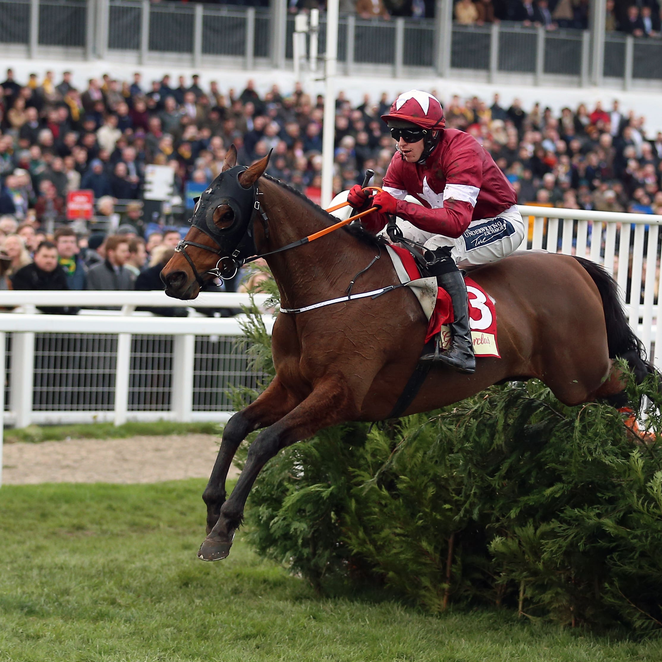 Tiger Roll won the Glenfarclas Chase at Cheltenham last week, for the second year running, by 22 lengths