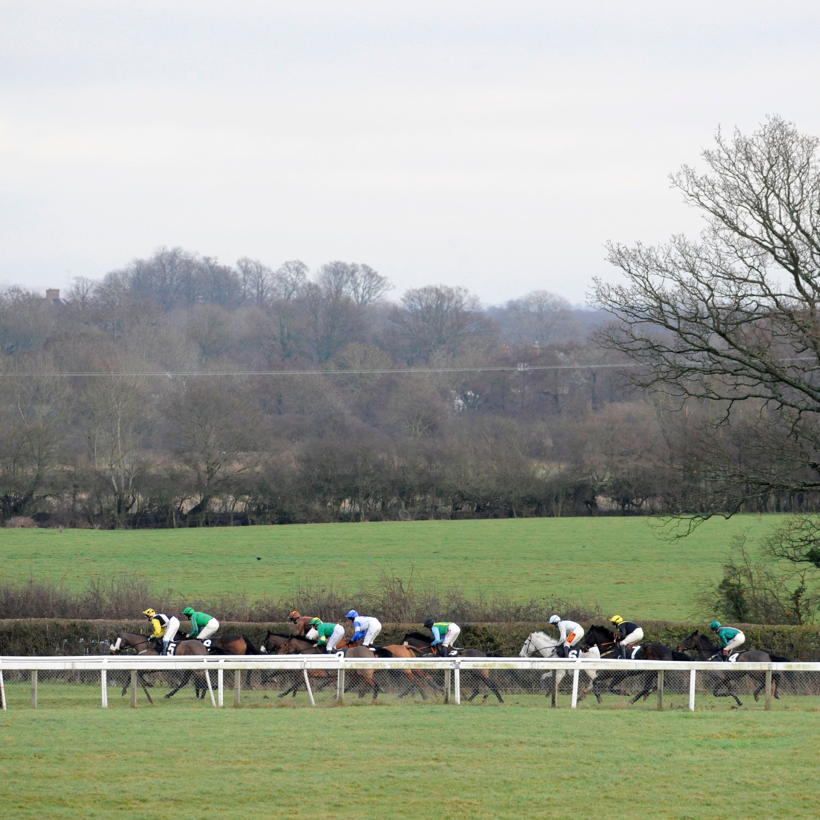 Plumpton staged the Sussex National, won in fine style by The Two Amigos