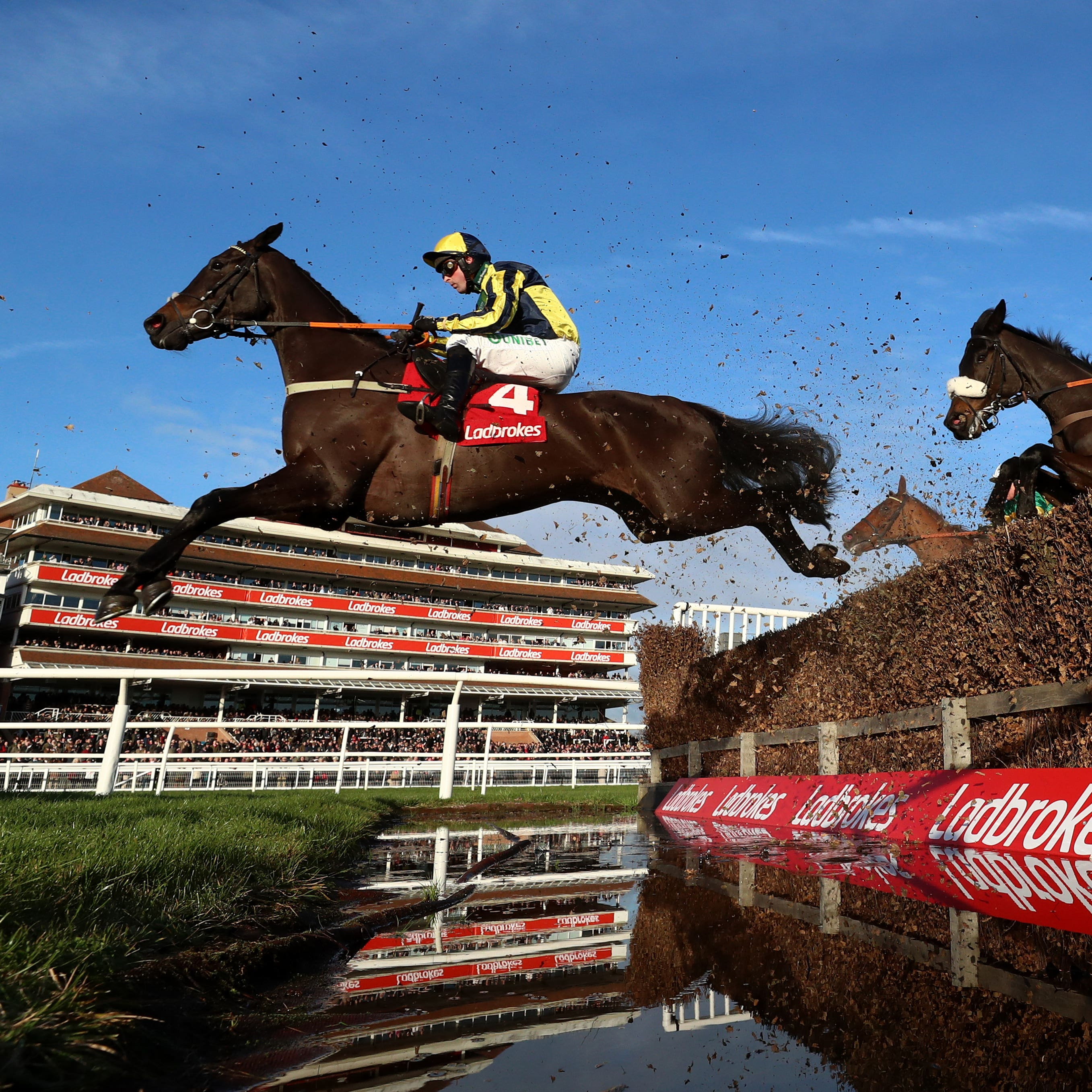 Willoughby Court could be aimed at the Ladbrokes Trophy at Newbury