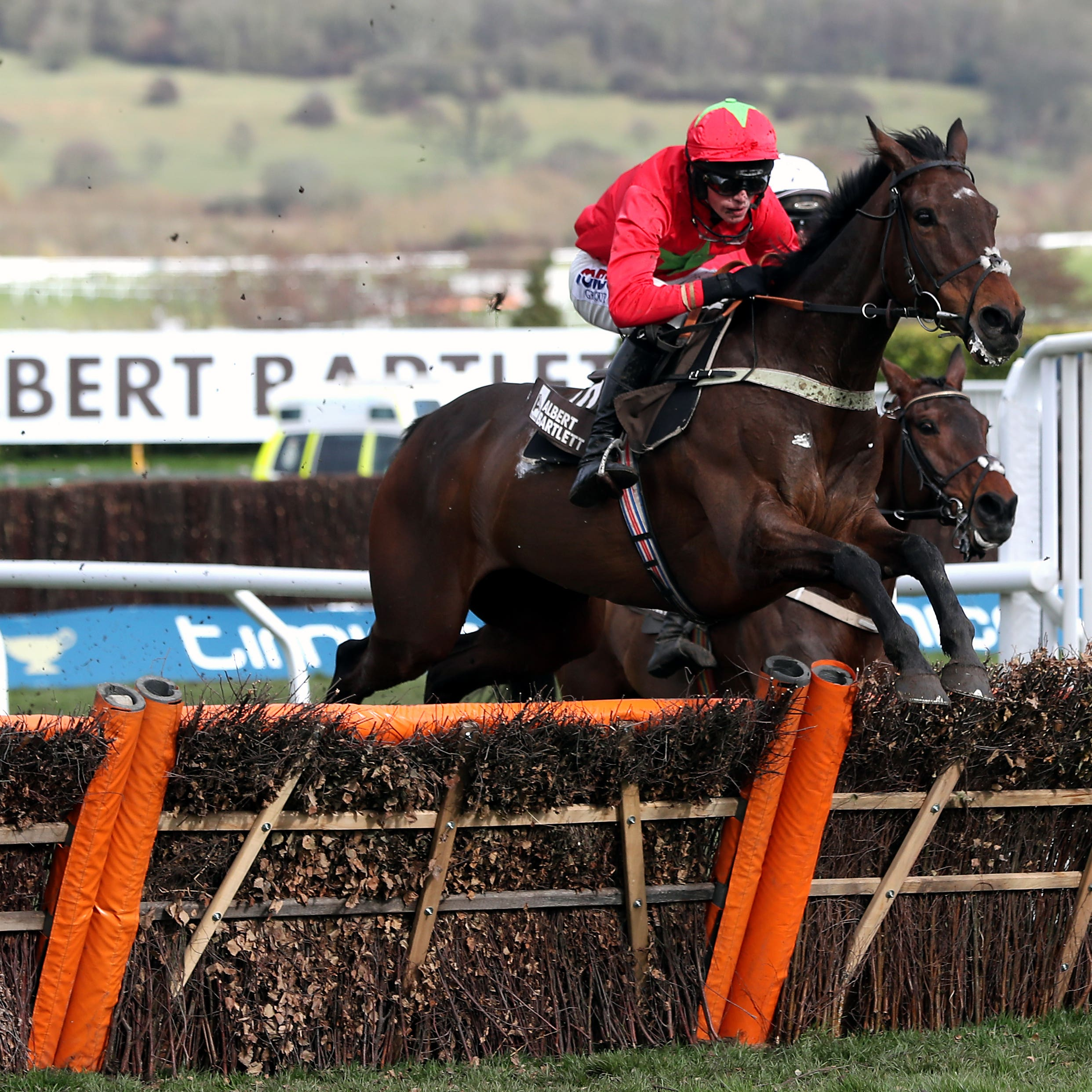 Kilbricken Storm is aiming to remain unbeaten over fences