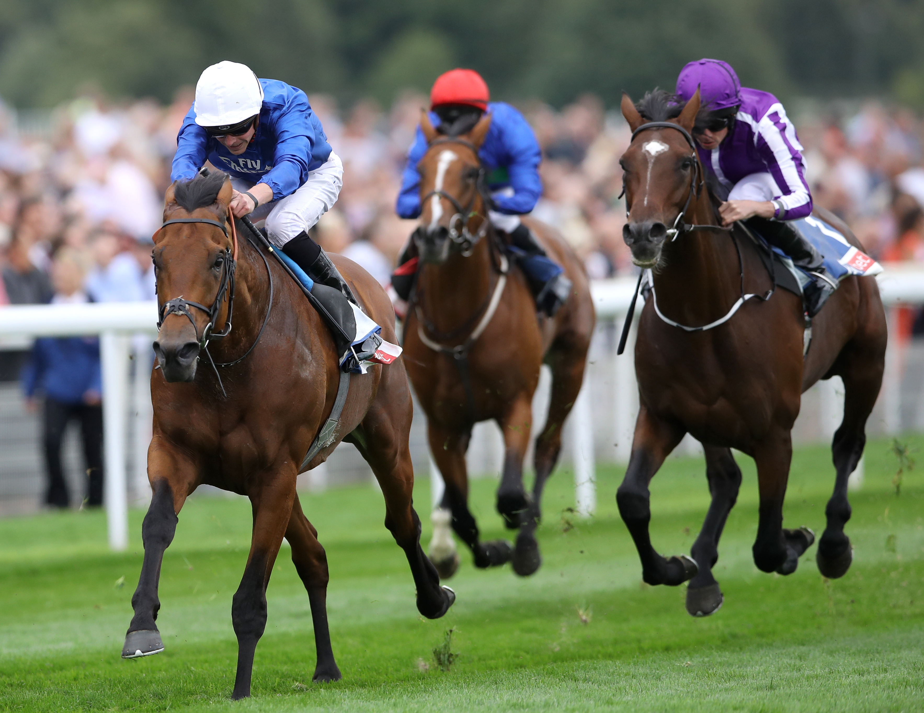 Old Persian is being lines up for an outing in Germany in the Longines Grosser Preis Von Berlin at Hoppegarten on Sunday (Tim Goode/PA Images)