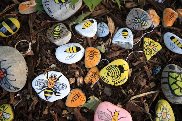 Bees painted on stones left in tribute to all the victims of the Manchester Arena terror attack (Peter Byrne/PA)