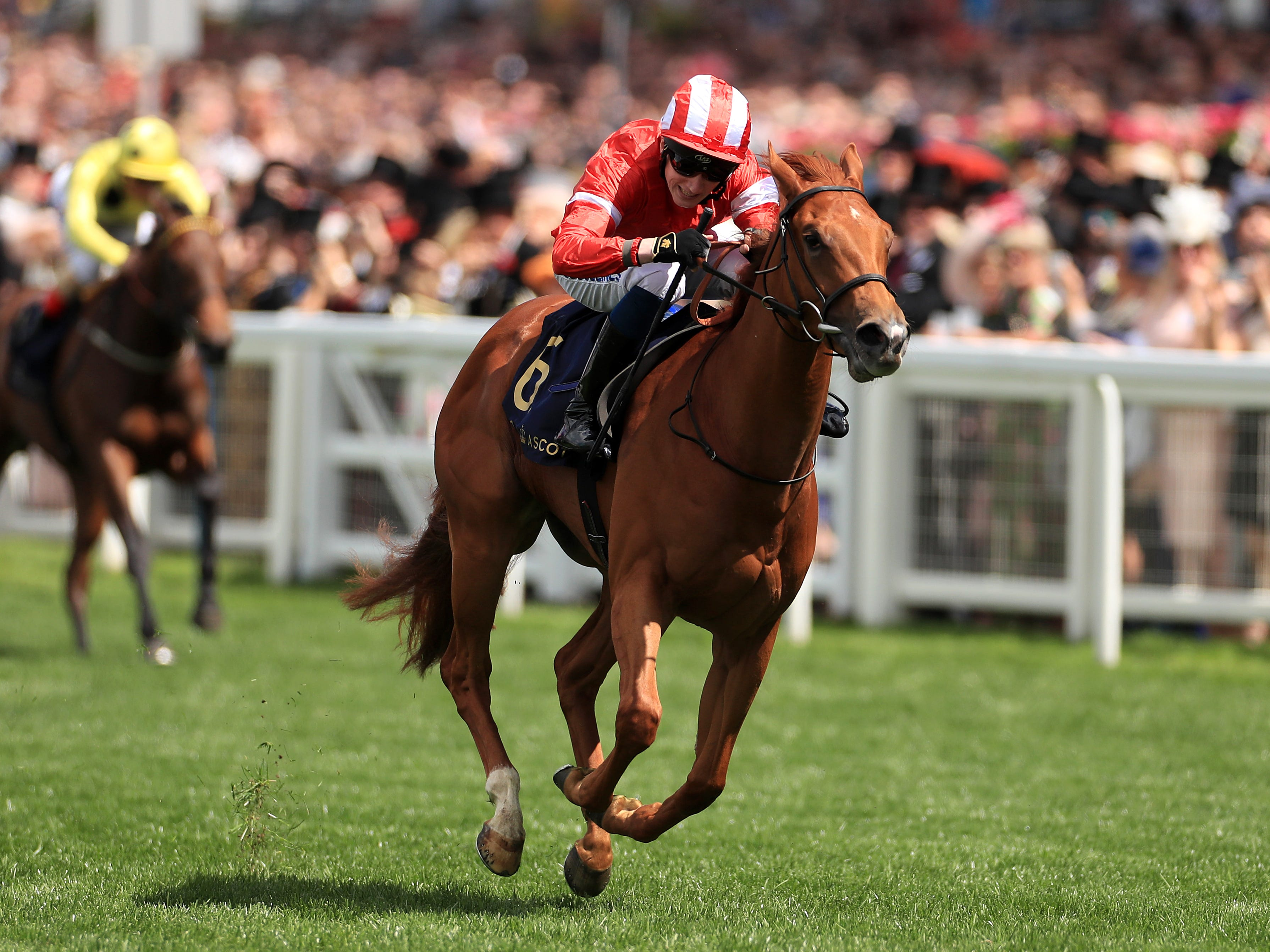 Daahyeh will try to follow up her success in the Albany Stakes when she goes for the Duchess of Cambridge Stakes at Newmarket (Mike Egerton/PA)