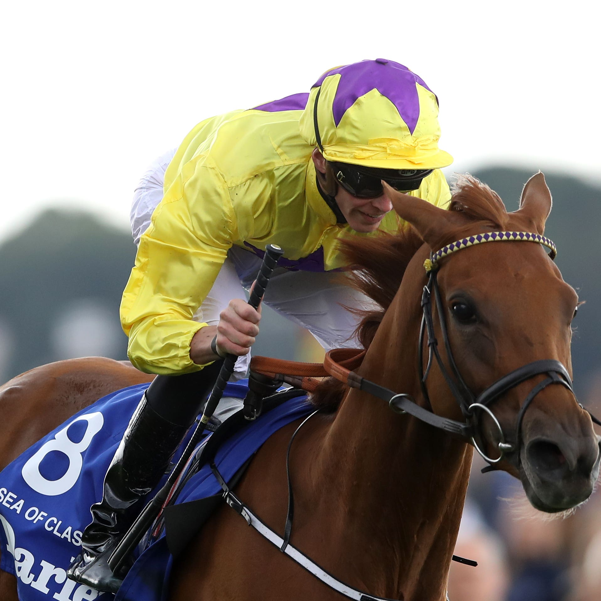 Sea Of Class remains on target for the King George