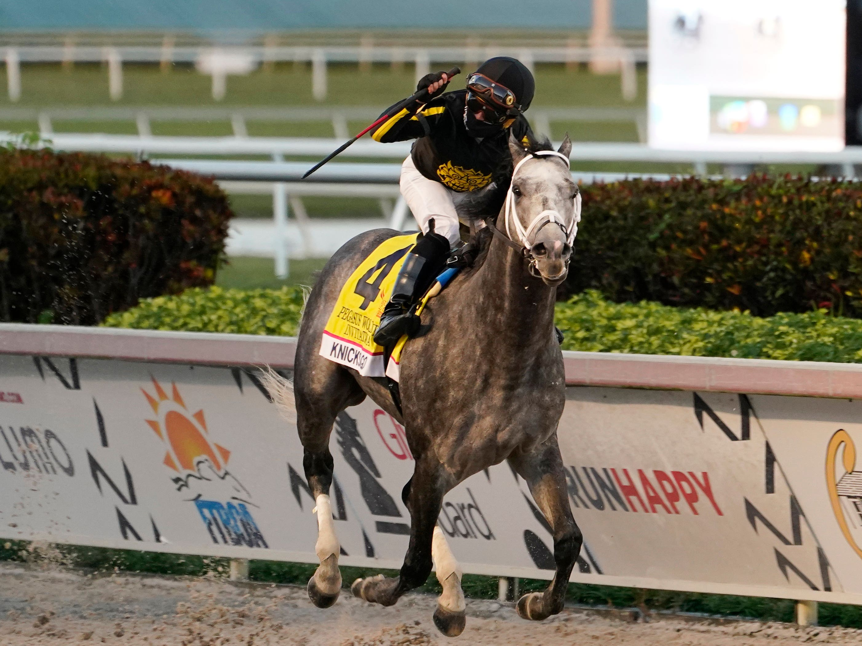 Knicks Go stormed to a brilliant victory in the Pegasus World Cup (Marta Lavandier/AP)